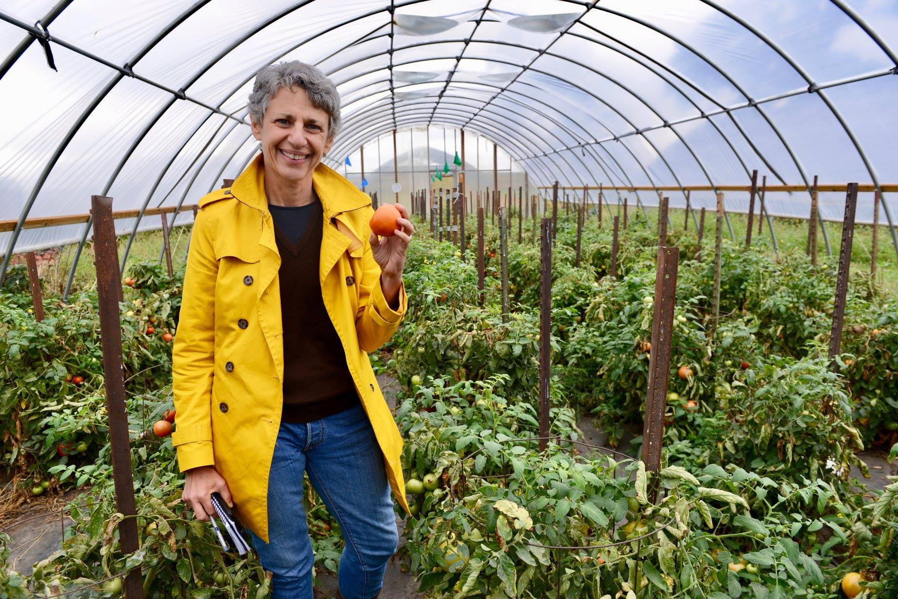 Tamar pauses for a portrait in a high tunnel where the Rineharts grow tomatoes and peppers to sell at the  Des Moines' Downtown Farmers' Market .