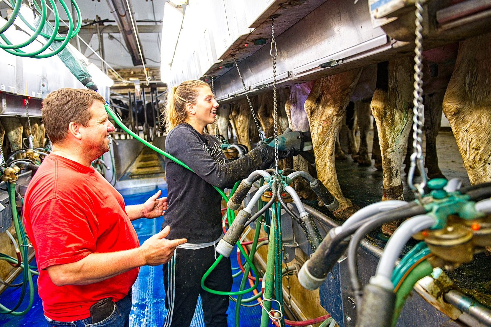 Burken's daughters, Hannah, Haley and Hillary also help out with various aspects of the dairy and farm. Photo credit: Joseph L. Murphy/Iowa Soybean Association
