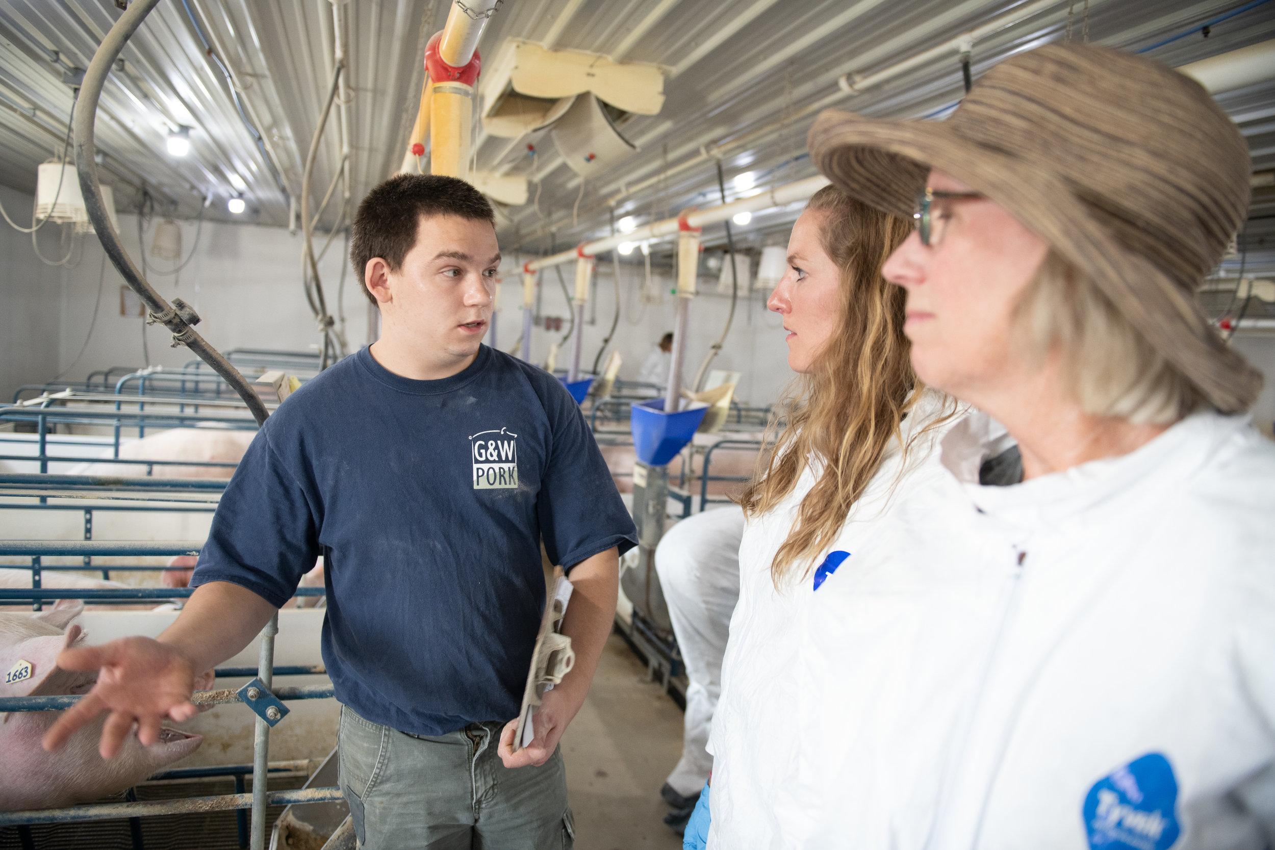 Participants tour a farrowing barn at G&W Pork in Aurora. Photo credit: Joseph L. Murphy/Iowa Soybean Association