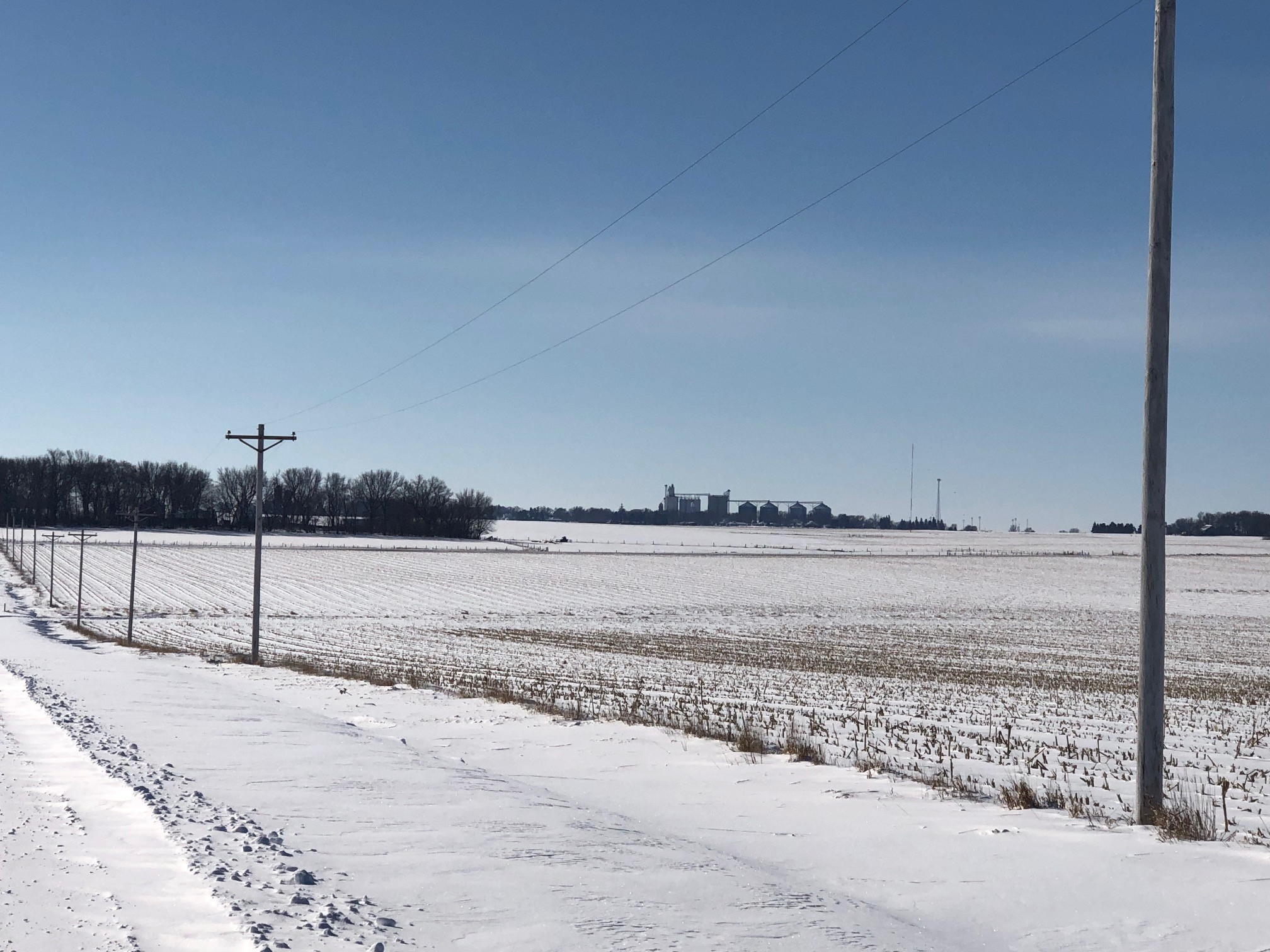 February on the Oswald family farm in Cleghorn. Photo credit: Tom Oswald