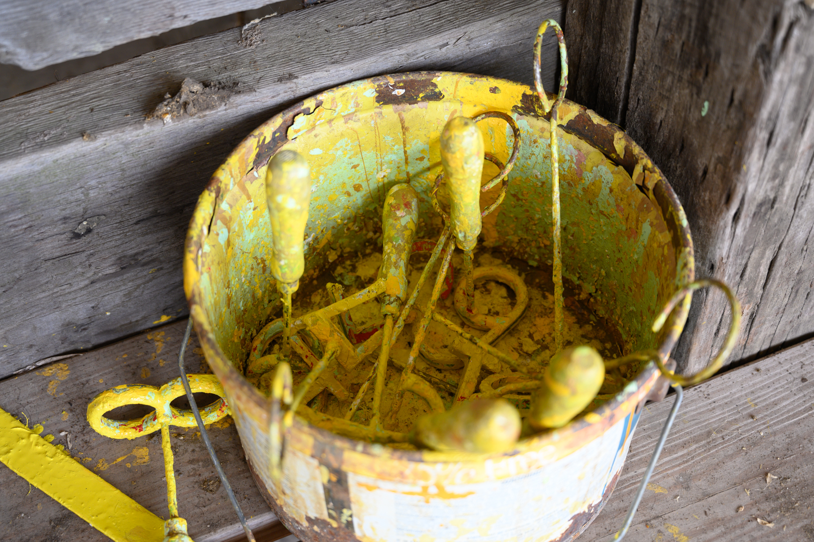 A bucket of yellow paint and metal letters are used to mark livestock prior to shows at the Jones County Fair. Photo credit: Joseph L. Murphy/Iowa Soybean Association