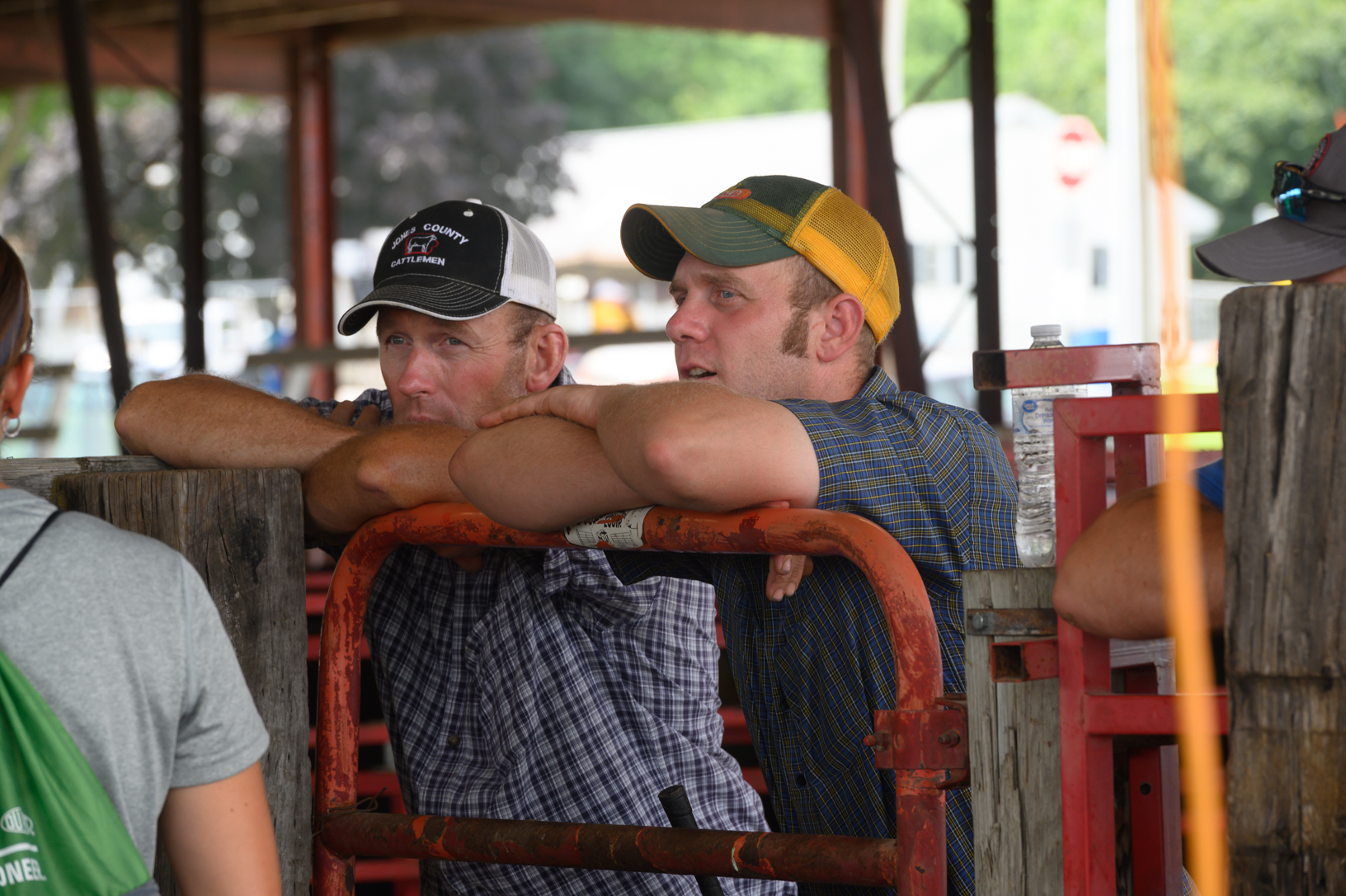 Josh Smith and Mike Lynch, both of Cascade, watch as livestock are checked-in for the Jones County Fair in Monticello. Photo credit: Joseph L. Murphy/Iowa Soybean Association