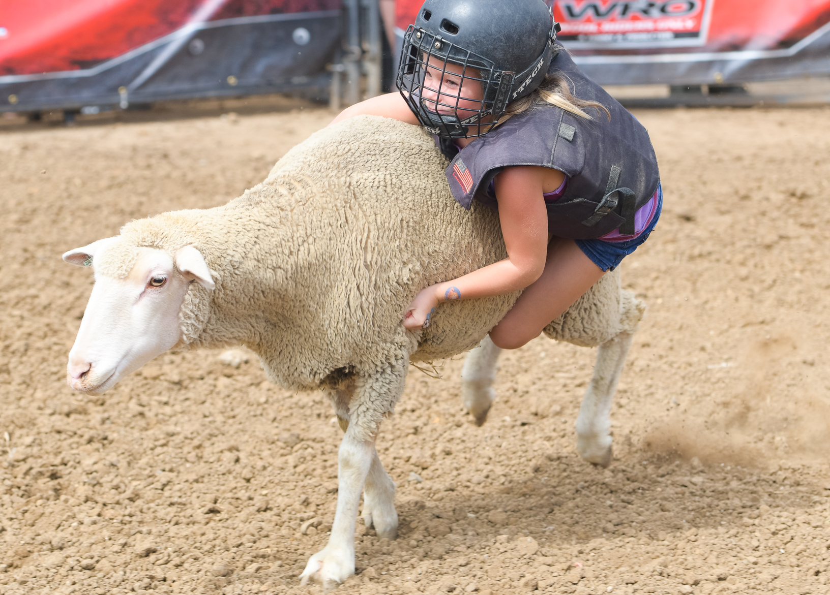 A girl keeps a firm grasp of sheep wool while competing in the Wool Riders Only Mutton Bustin' competition. Photo credit: Joseph L. Murphy/Iowa Soybean Association