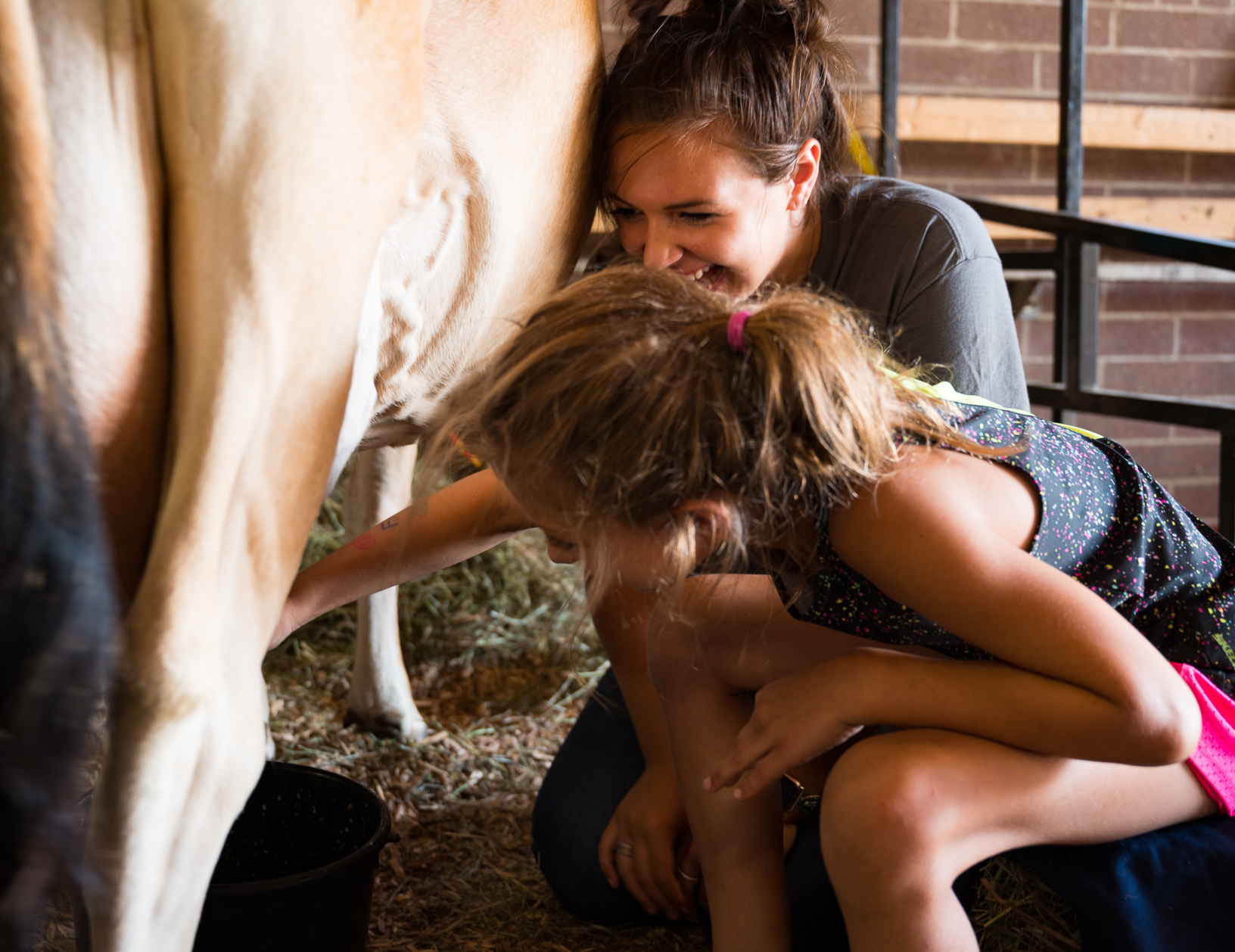 Josie Young, an Iowa State University Dairy Science Club student, smiles as Aleeri learns how to milk a cow at the Iowa State Fair. Photo credit: Joseph L. Murphy/Iowa Soybean Association