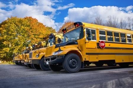 19666873_S_School_Bus_Trees_clouds.jpg