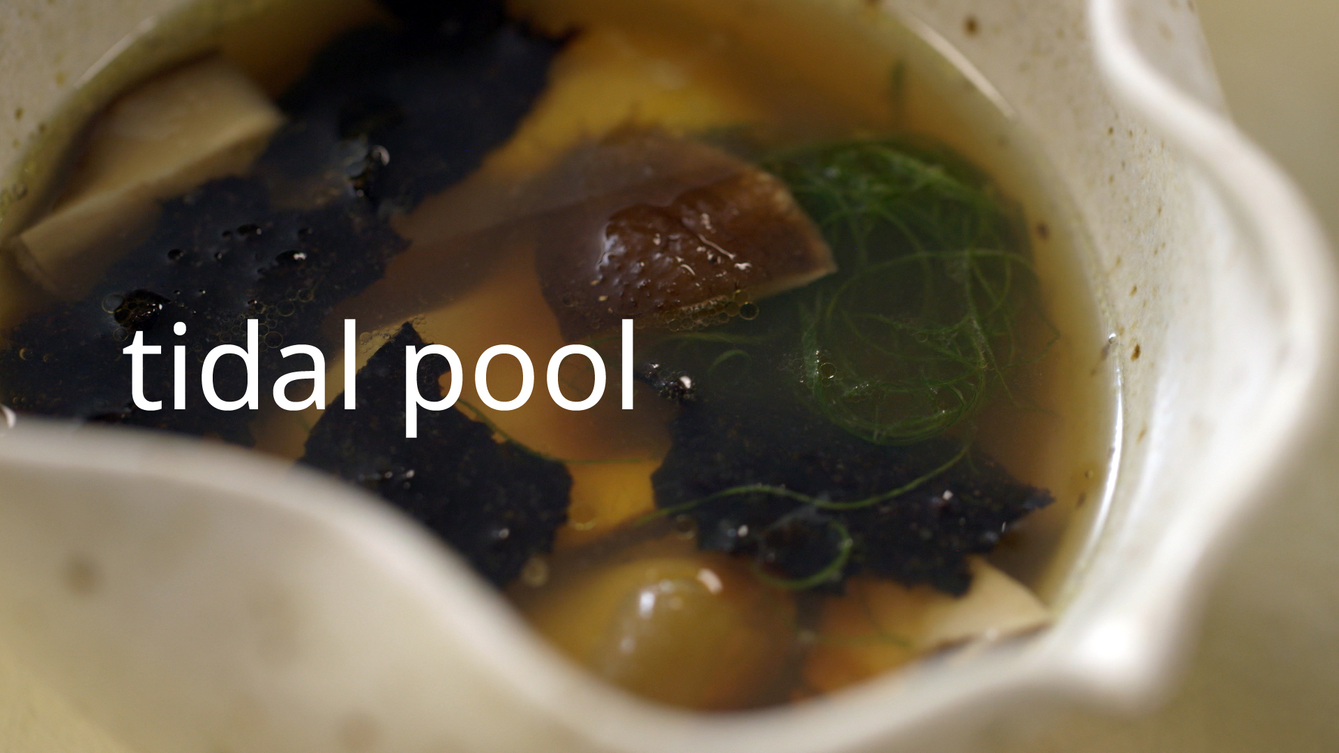 tidal-pool-v21.jpg