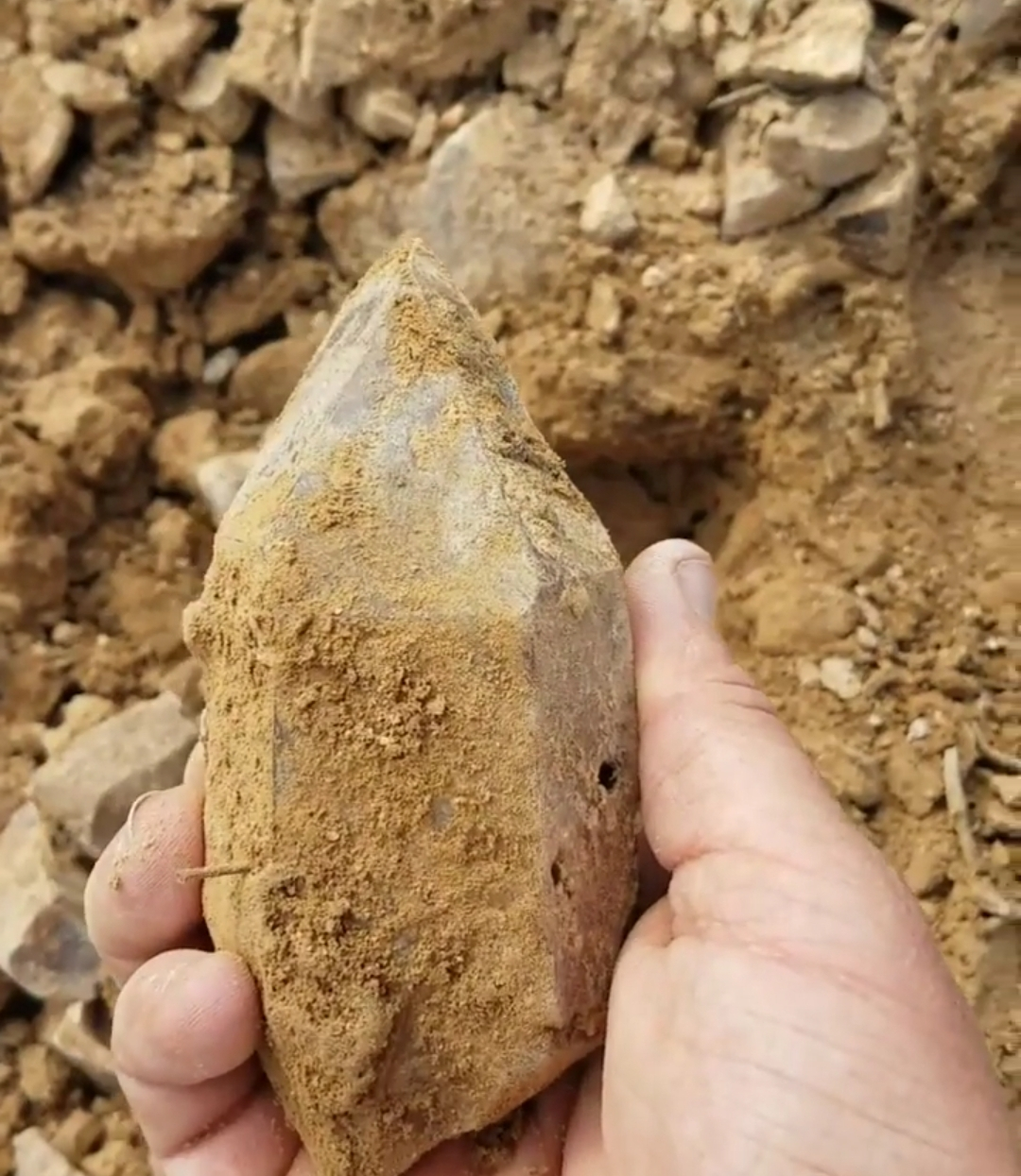 Large Smoky Mined in California, fresh out of the earth for the first time