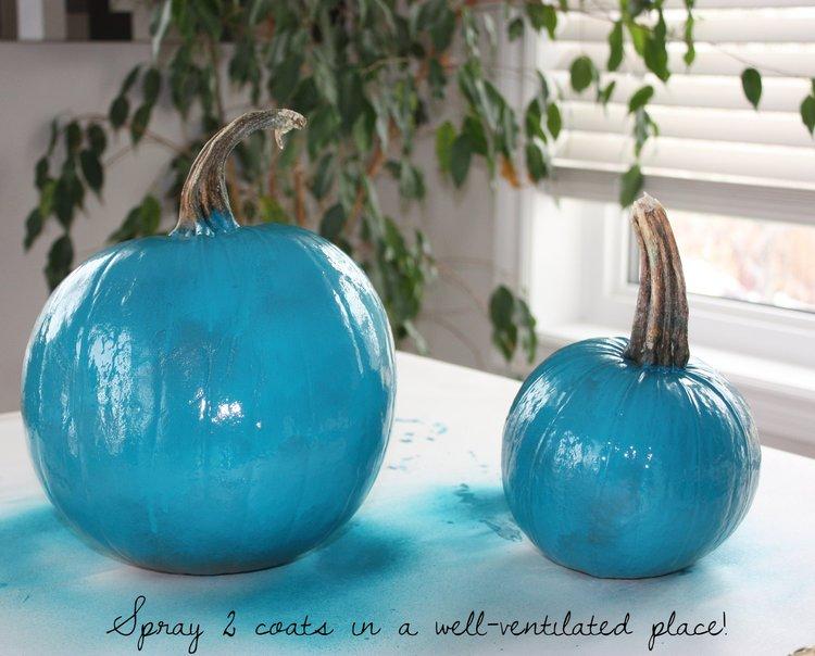 teal+pumpkin+project+saskatoon+creative+ideas2.jpg