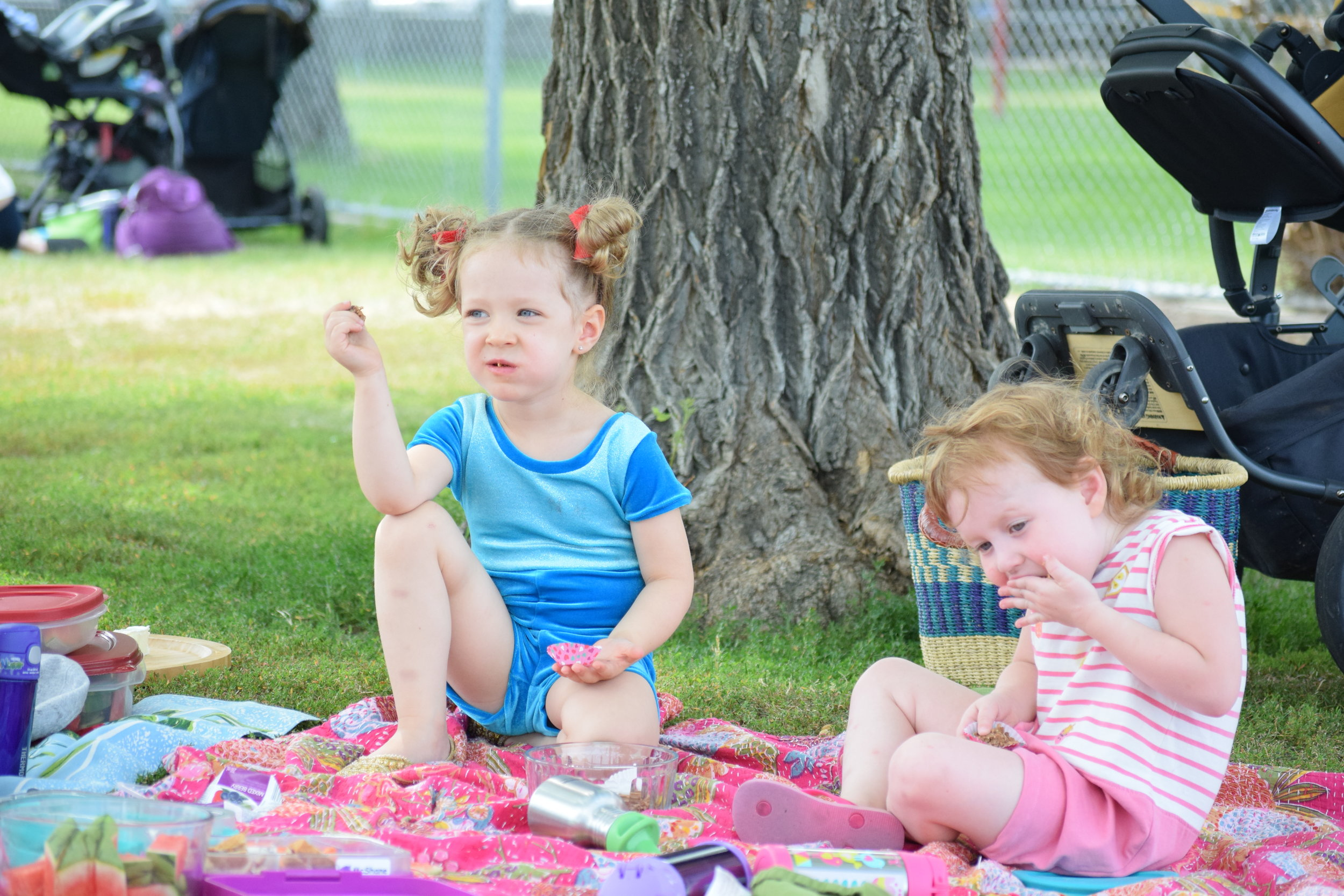 picnic packing list for toddlers