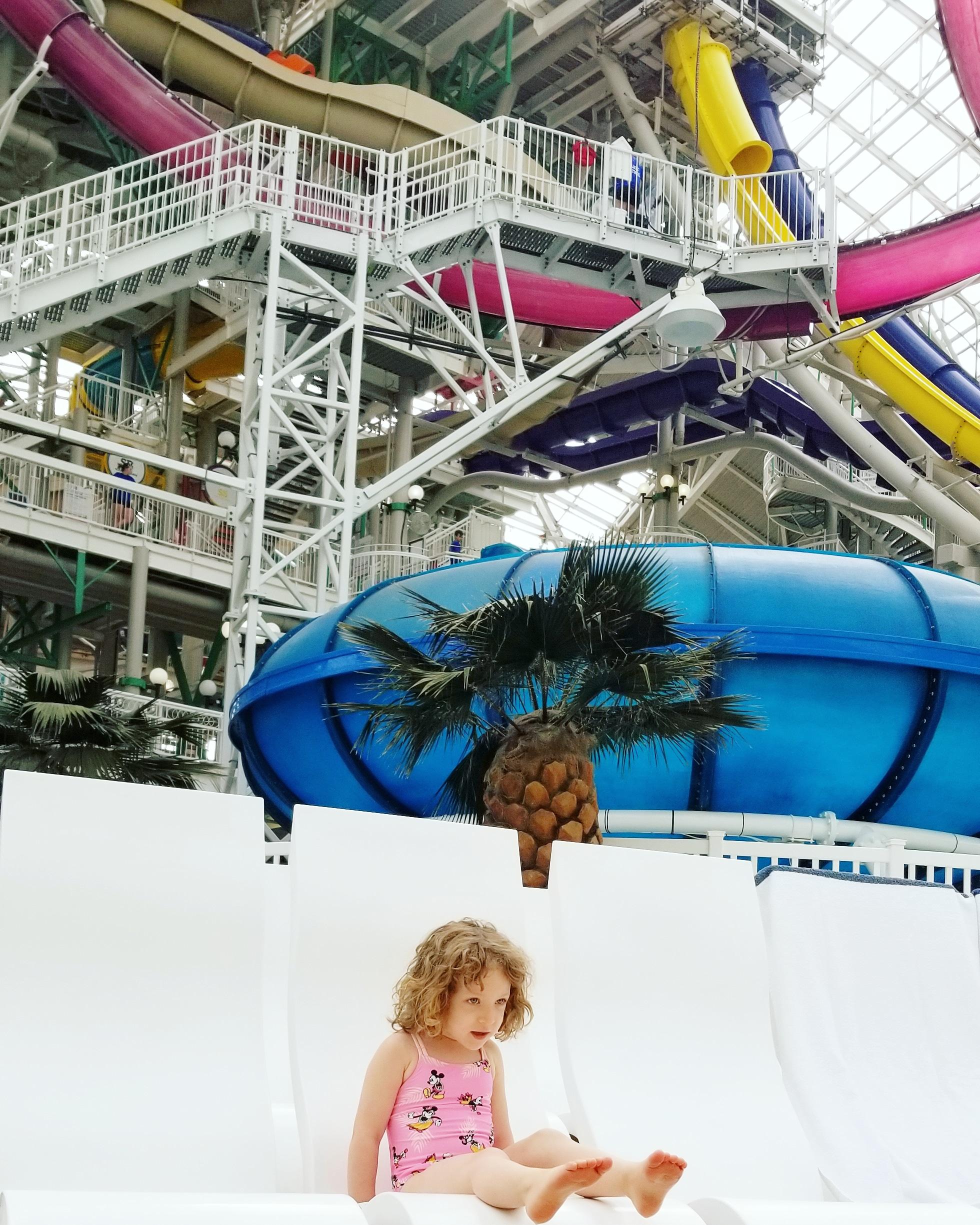 west edmonton mall world waterpark tips2.jpg