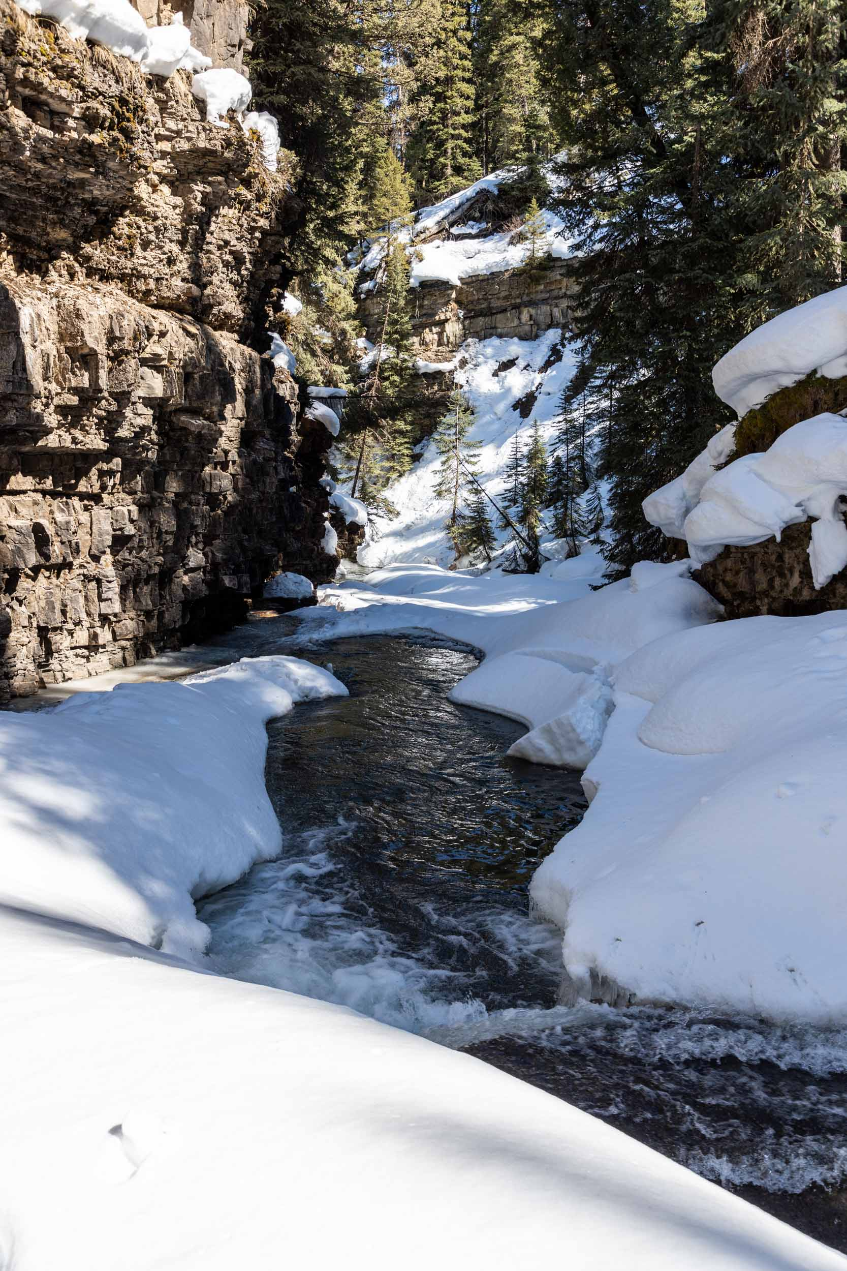 Ousel Falls Spring Hike-15.jpg