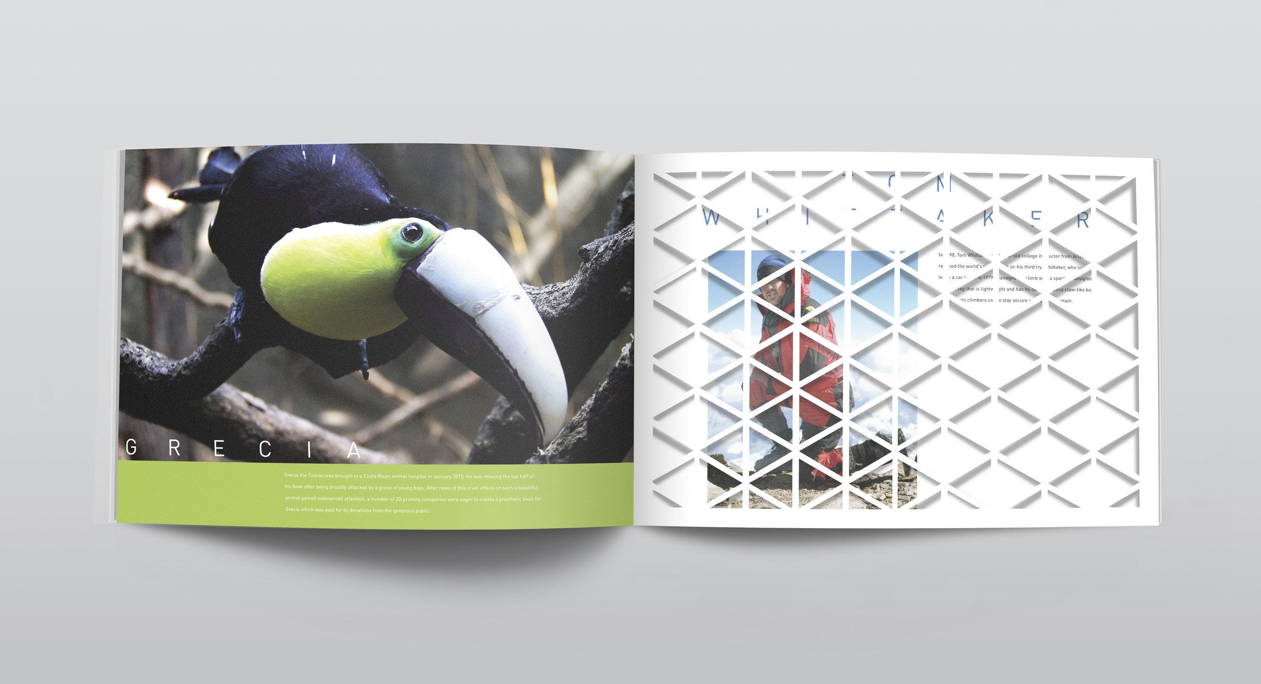 HybridBook_Page18.jpg