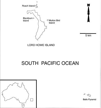 Lord Howe island Group in relation to Australia (Inset) (Taken from Priddel et al. 2003)