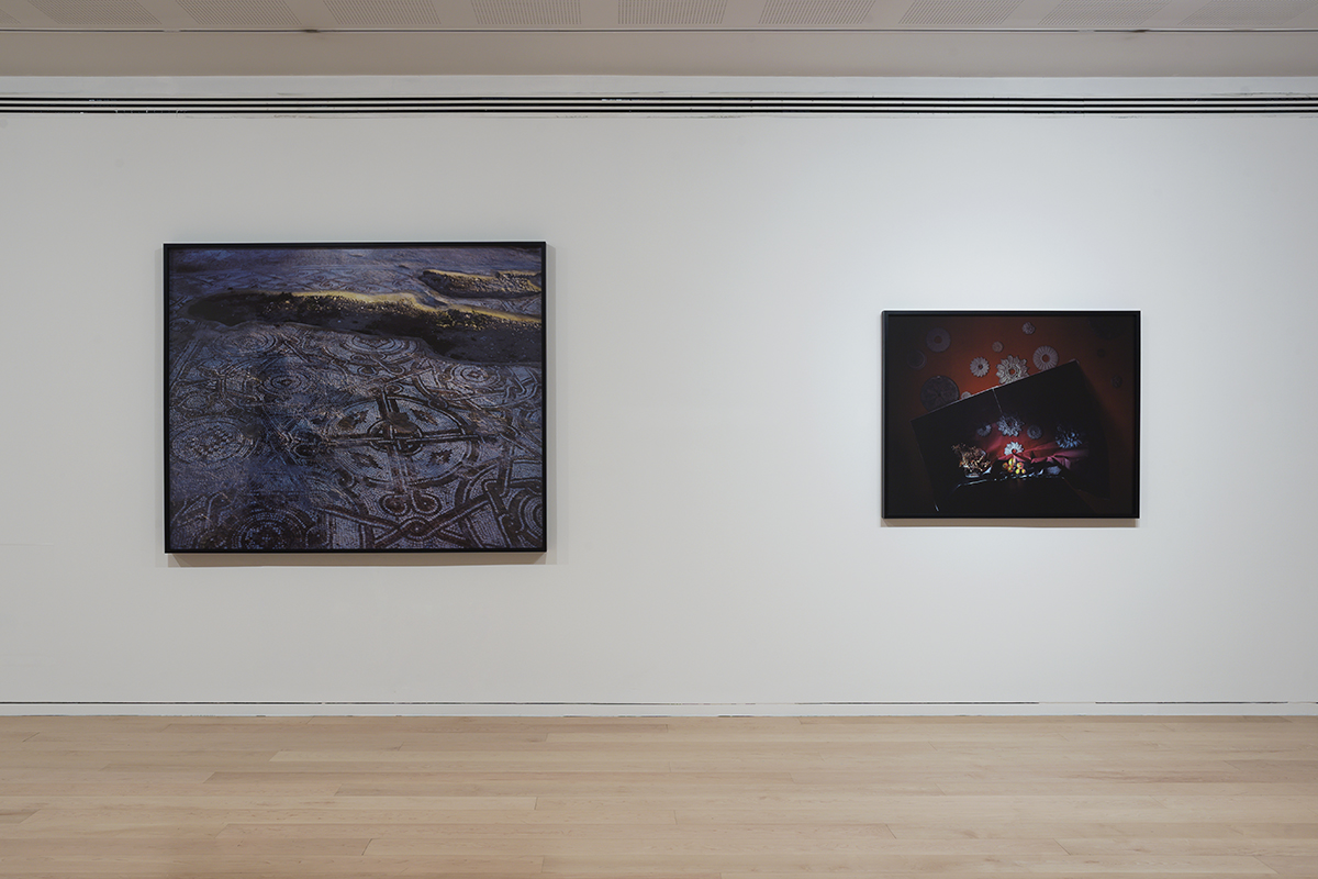 Only from this suddenness and on_Tel Aviv Museum of Art, 2016, Installation view7.jpg