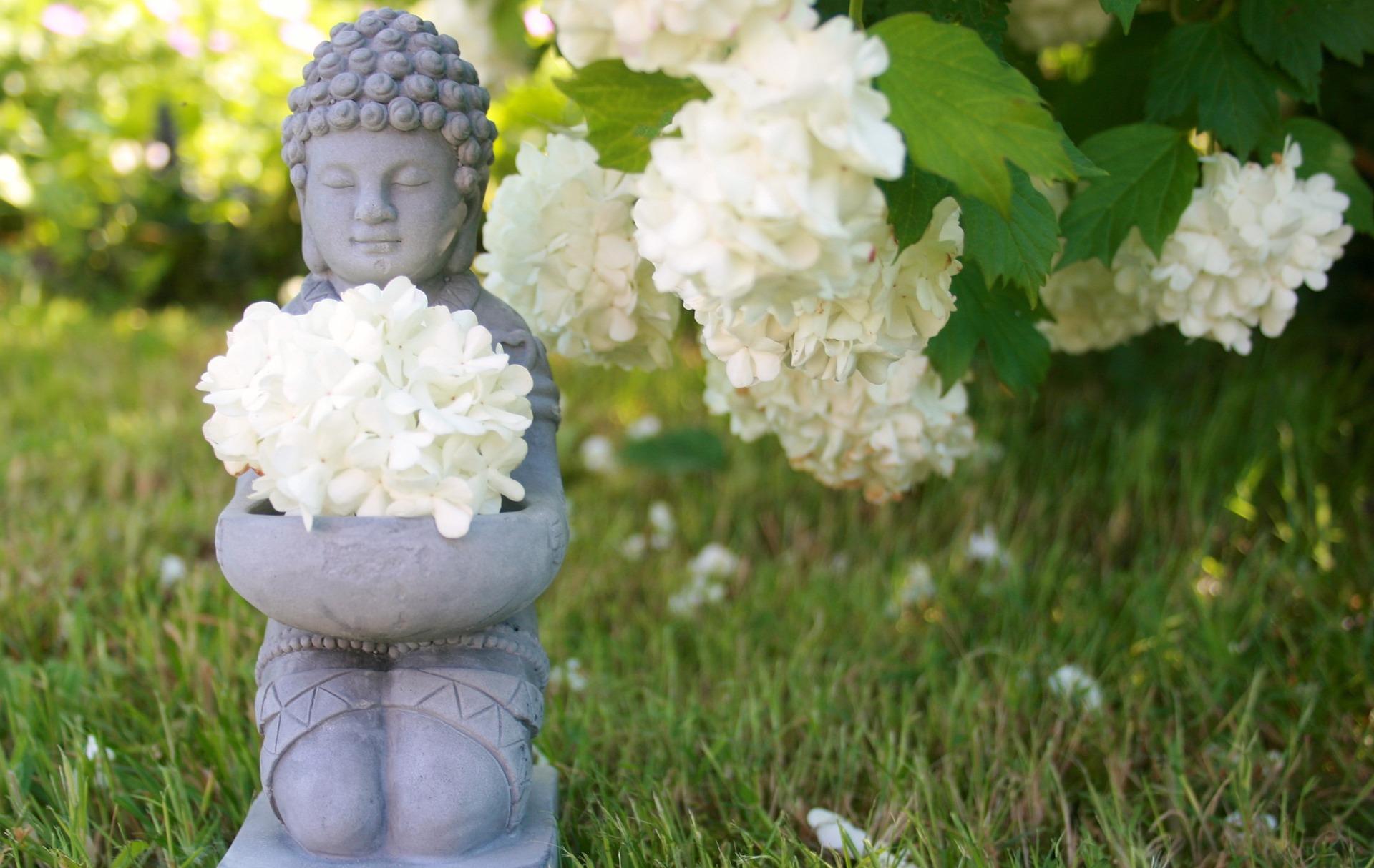 meditation blog.jpg