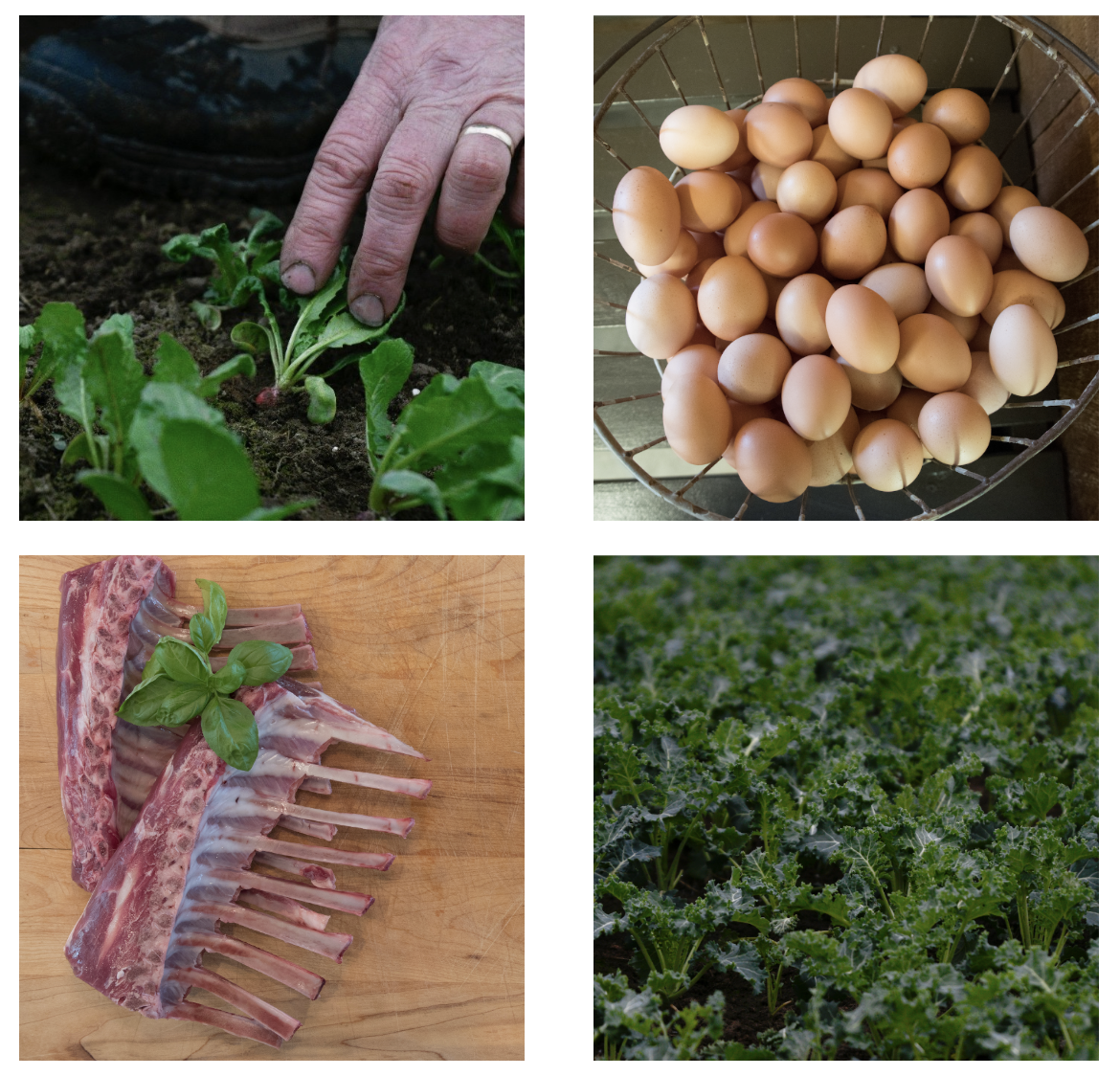 - Get 10% EXTRA BUCKS for your 2018 market purchases and help support the farm bring you tons of fresh produce and meats by participating in our Farm Membership Program.Your membership is like a CSA - you may use your EXTRA BUCKS for everything in the market including Easter Egg Radishes (coming soon!), eggs, all-natural meats and dark, leafy greens.How it works:1. Buy the level that works best for you. You may do this at the store or online here2. You get a card that works much like a debit card. It will be pre-programmed with your membership amount. If you purchase your membership online, your card will be ready and waiting for you at the market for the next time you shop.3. Your card will have your EXTRA BUCKS already added.Level $150 will have $165 on the cardLevel $300 will have $330 on the cardLevel $500 will have $550 on the card4. Just use your card to make purchases at the store until all your funds are used.