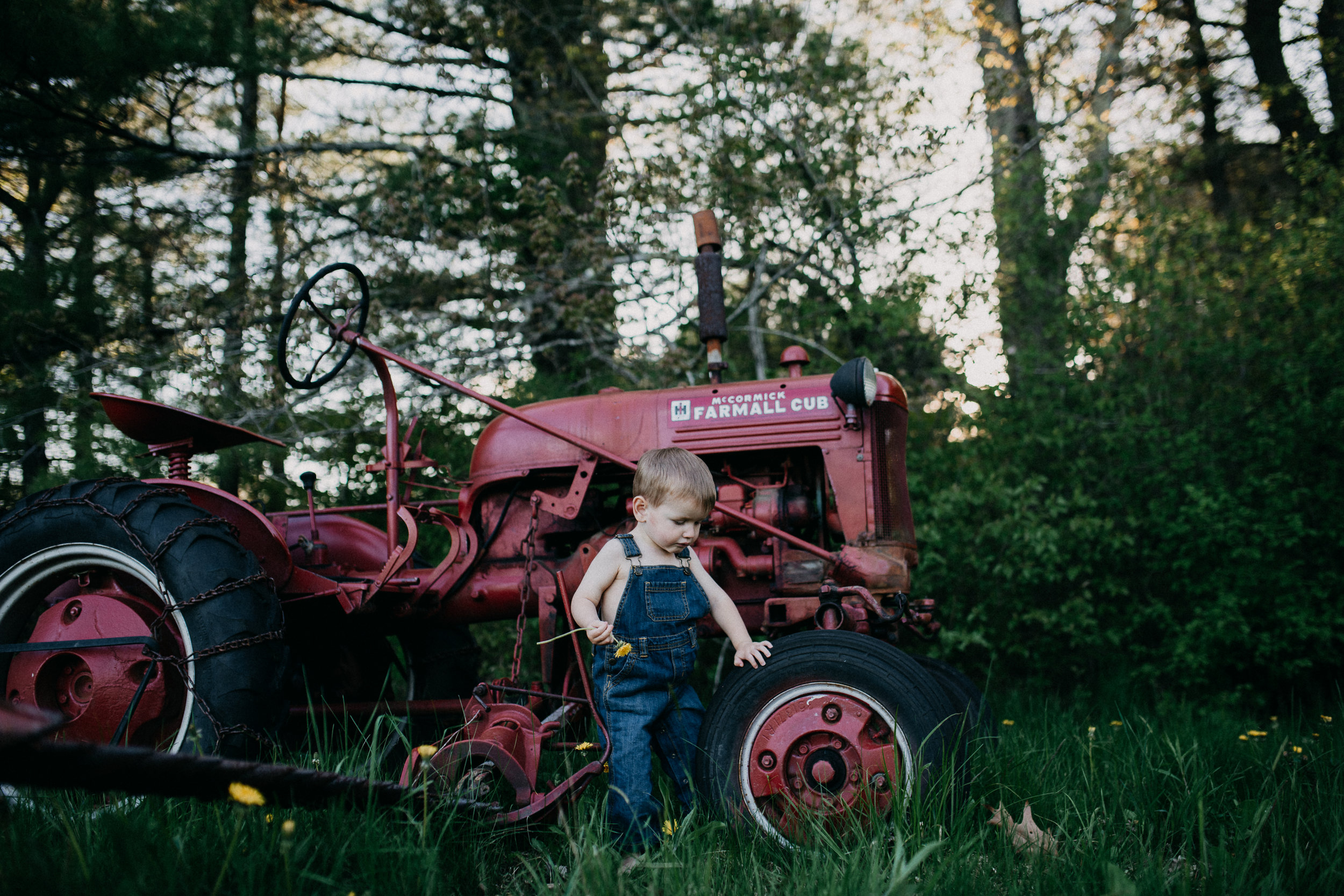 Maine Family Photography