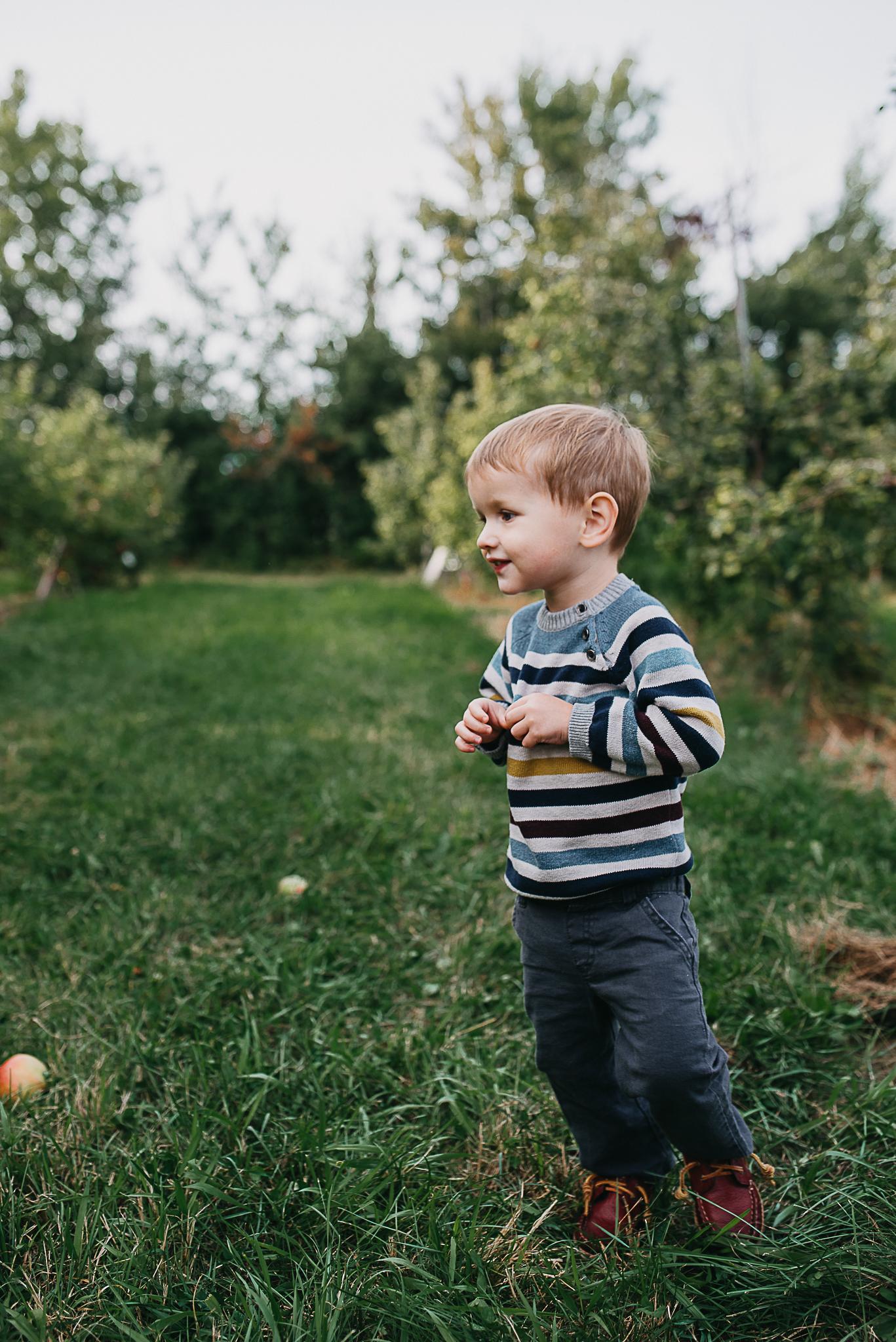 Poirier.orchard.comp--108.jpg
