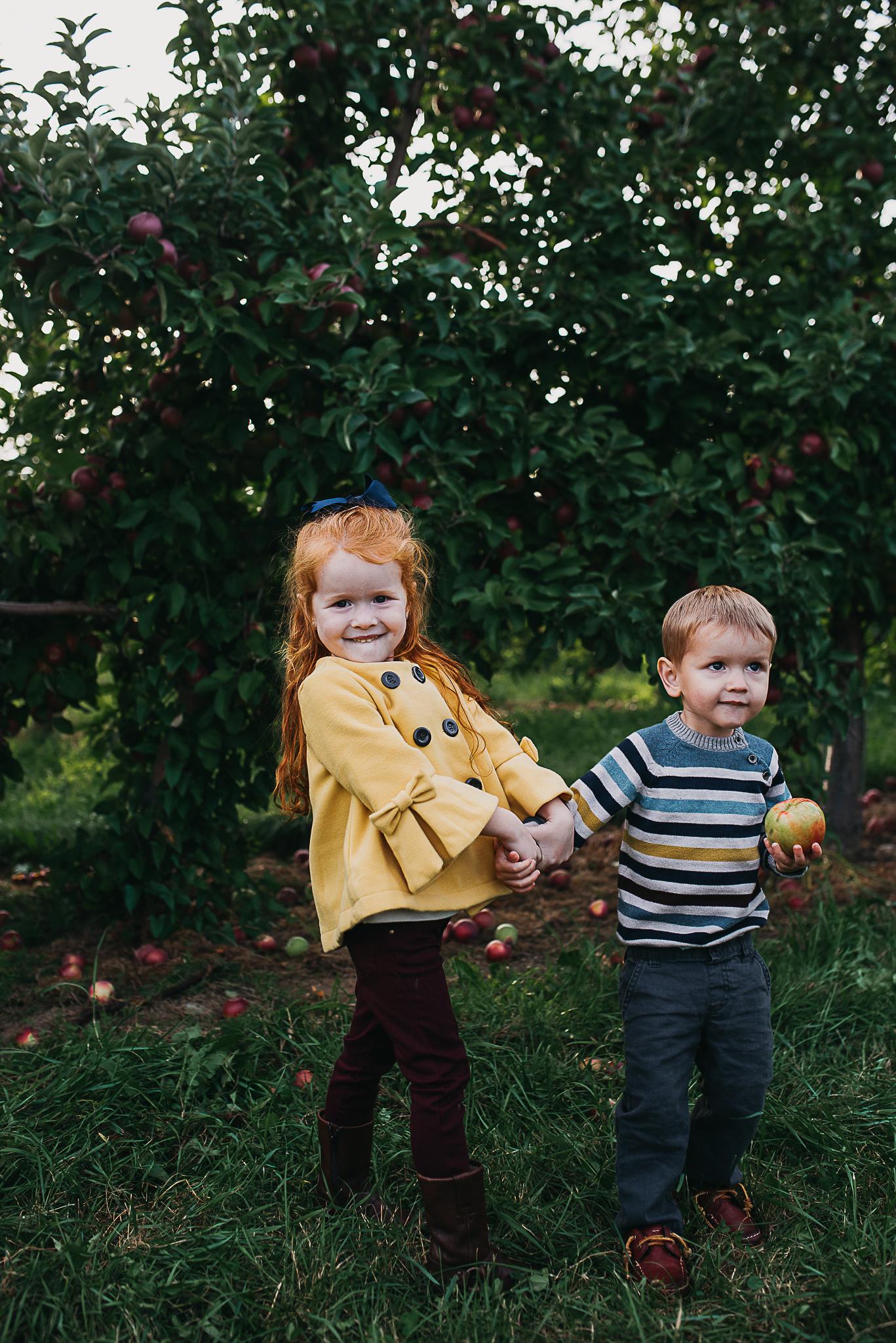 Poirier.orchard.comp--103.jpg