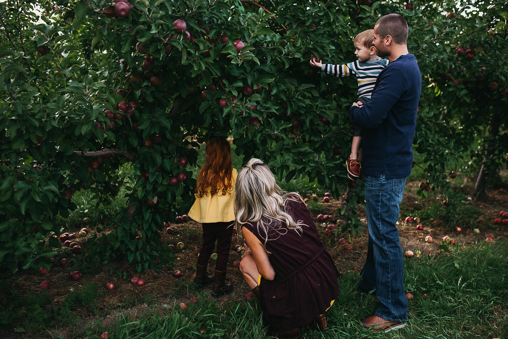 Poirier.Orchard-3847.jpg