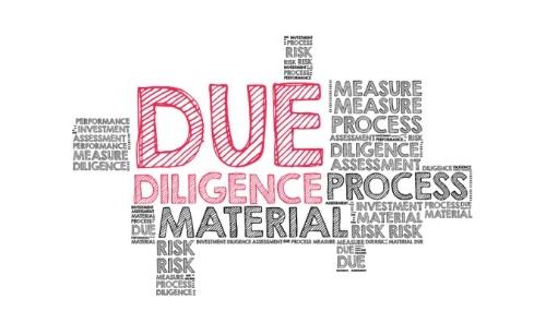 Diligence Word Cloud.jpg