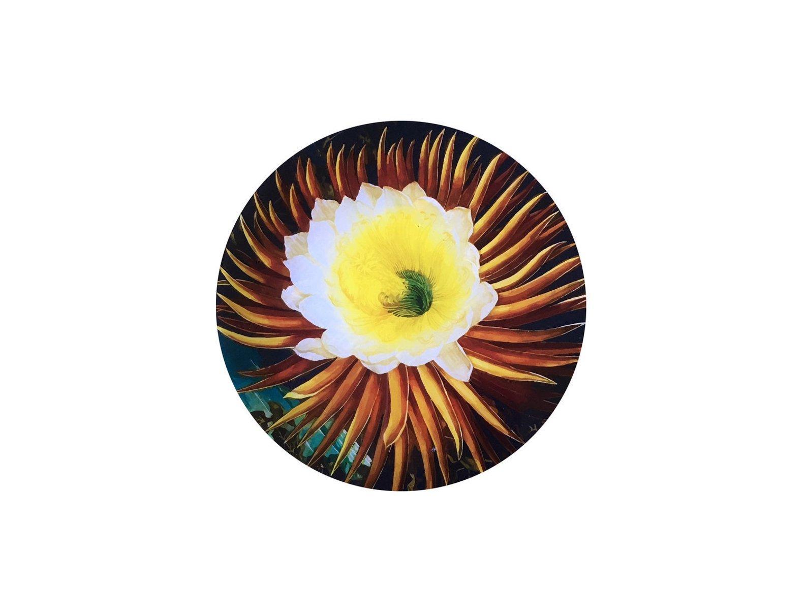 torpical flora.jpg