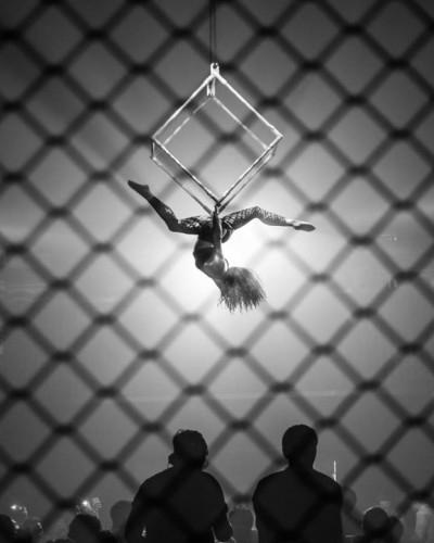 Gotham-Dancer-e1472576644101-1.jpg