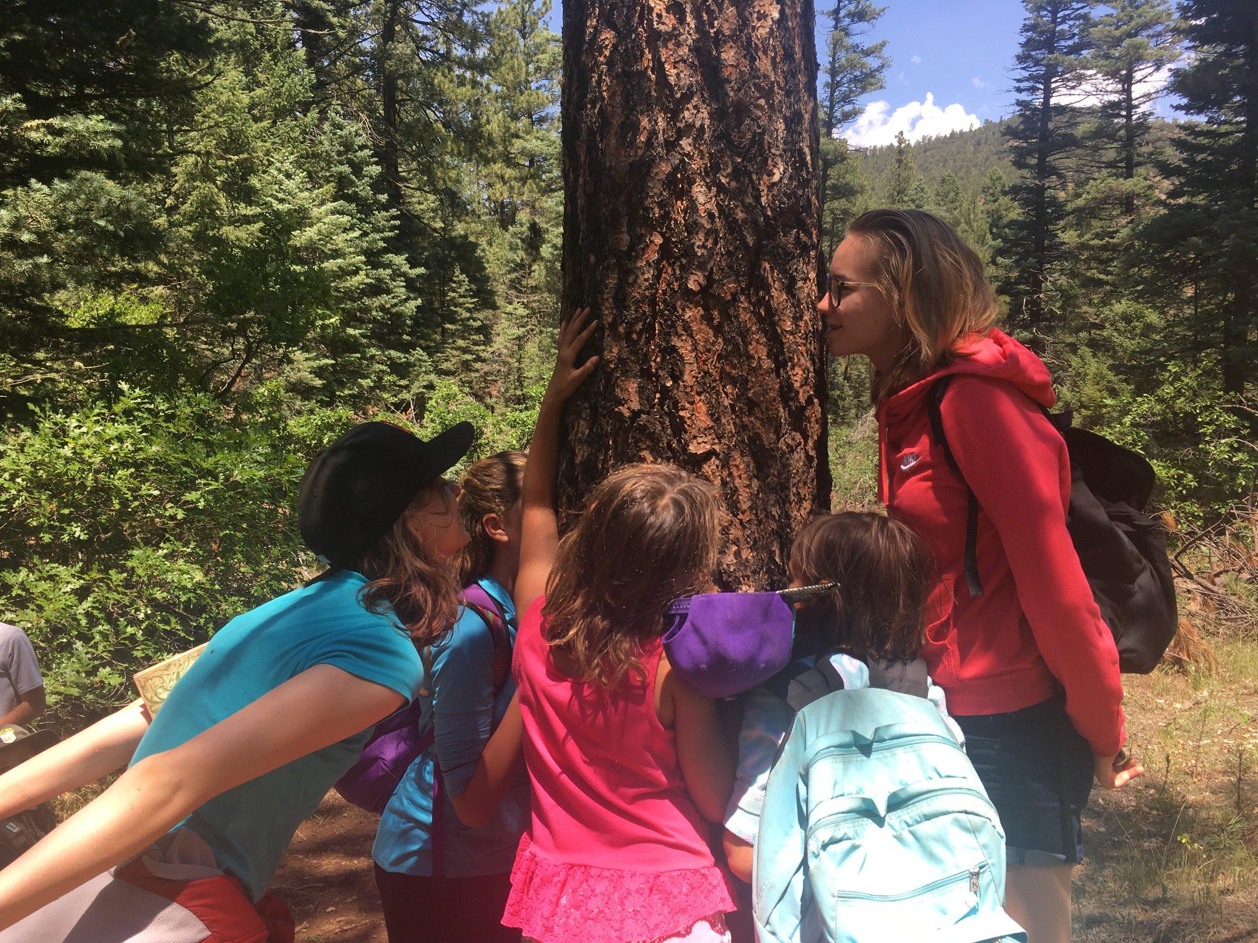 FFF tree hugging.JPG