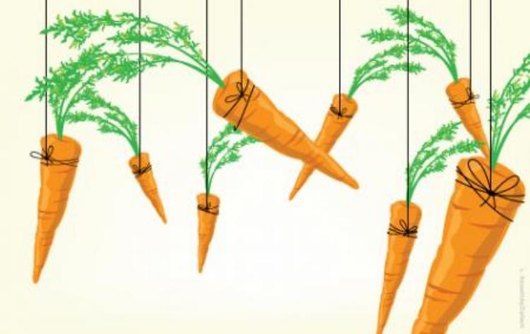 Carrots .jpg