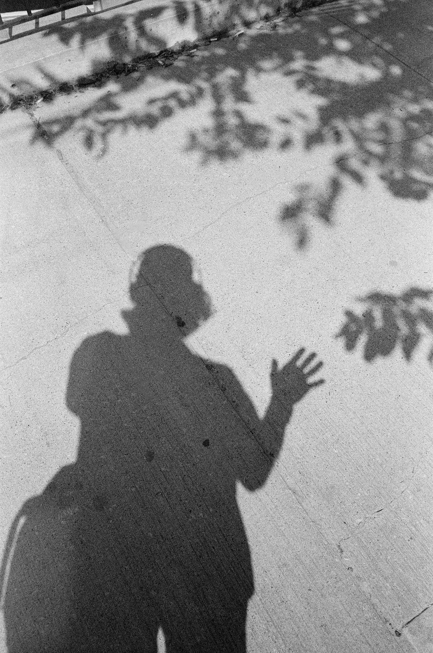 75-Self-Portrait-in-the-shadows.jpg