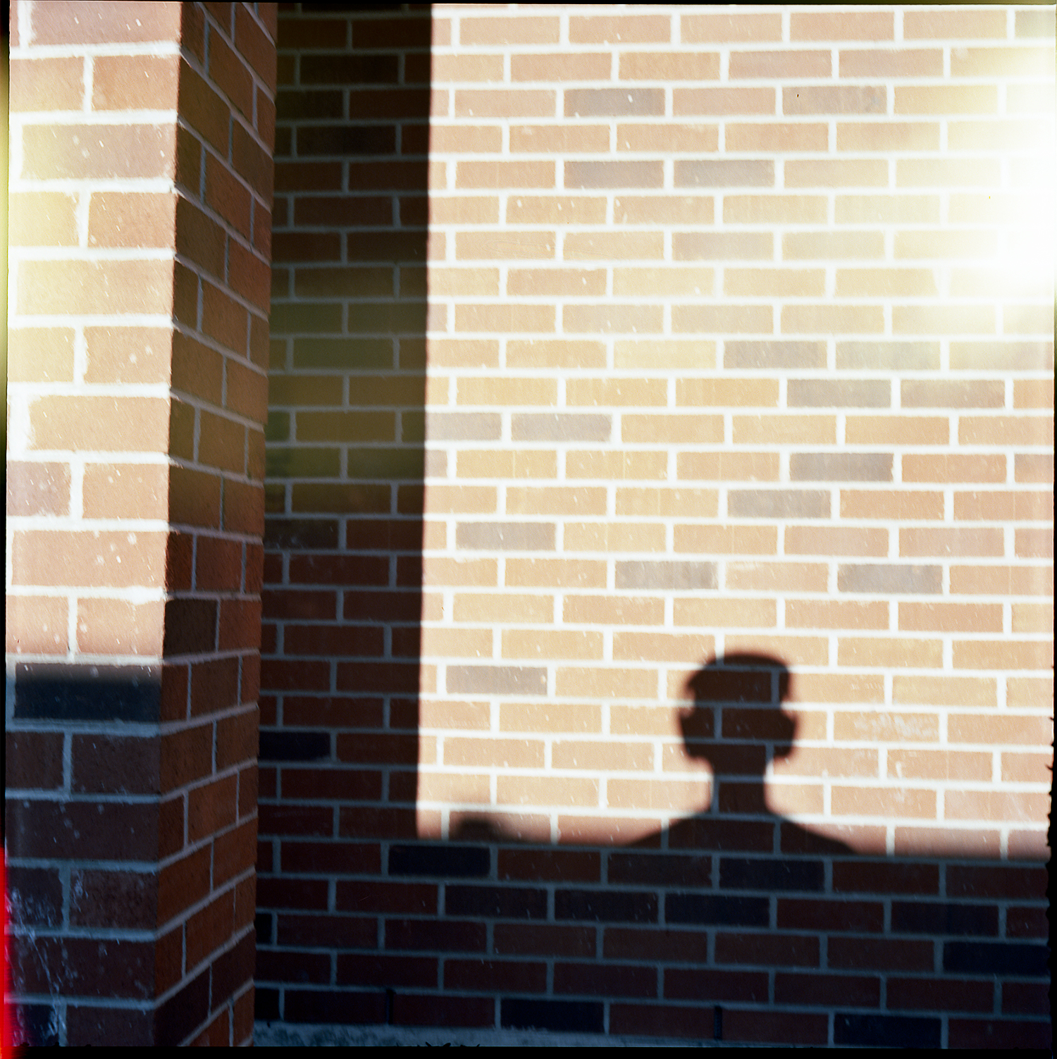 86-Summer-2015-Extra-Self-Portrait-in-the-shadows.jpg