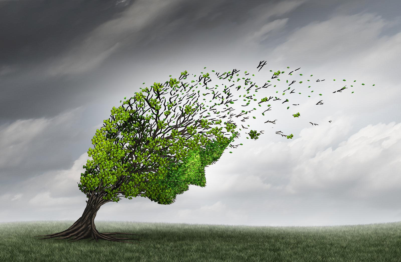 tree head.jpg