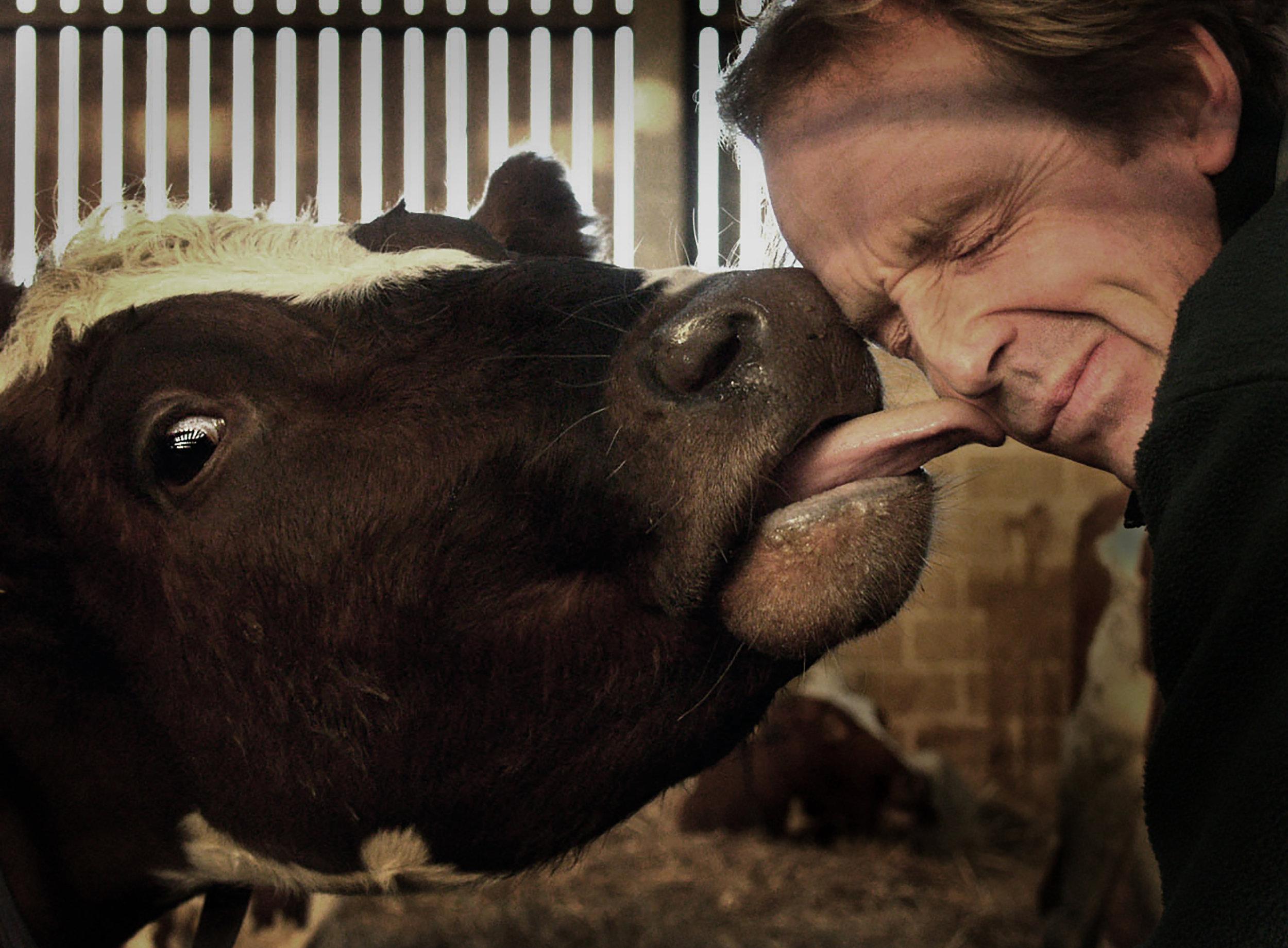 David Wilson (Duchy Home Farm, Highgrove)