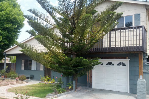 SOLD 810 Fair Avenue, Santa Cruz • $660,000  2 Bedroom, 2 Bathroom • 1,613 Sq. Ft.