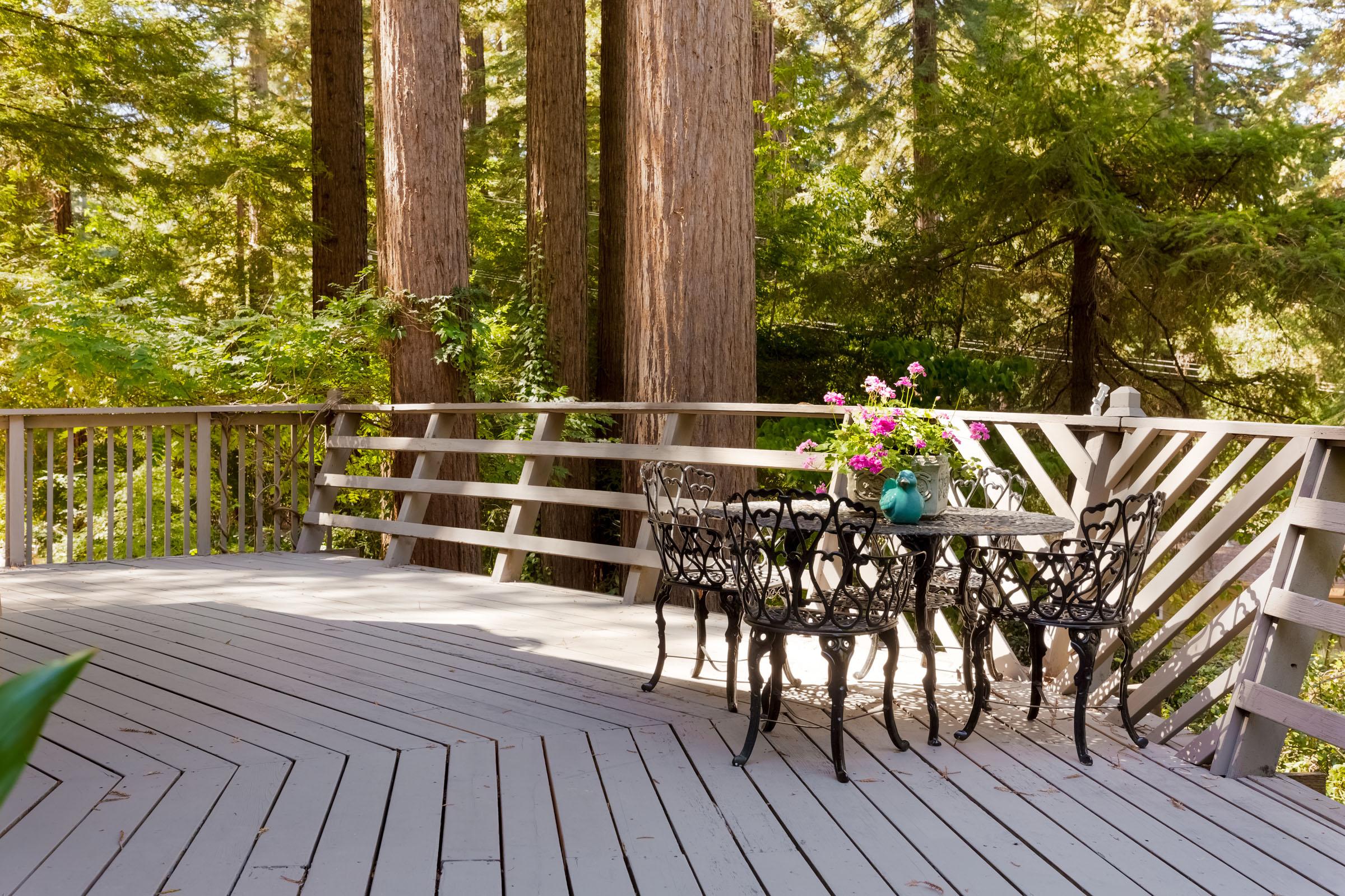 Sunny Deck under Redwoods Santa Cruz