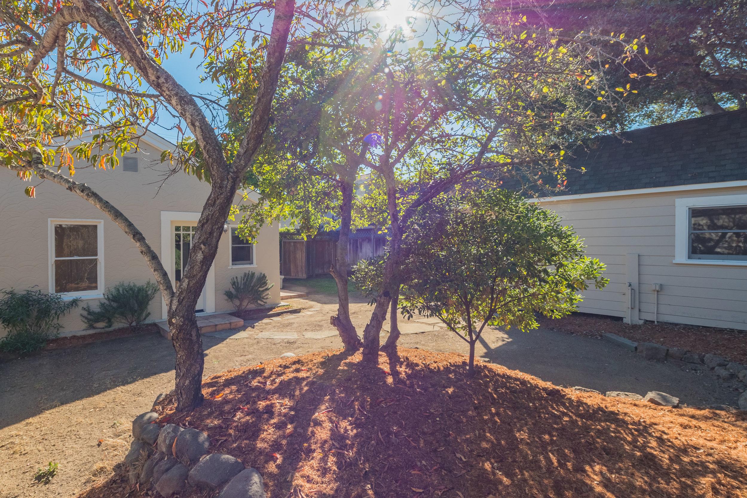 Single Family Home + ADU Santa Cruz, California
