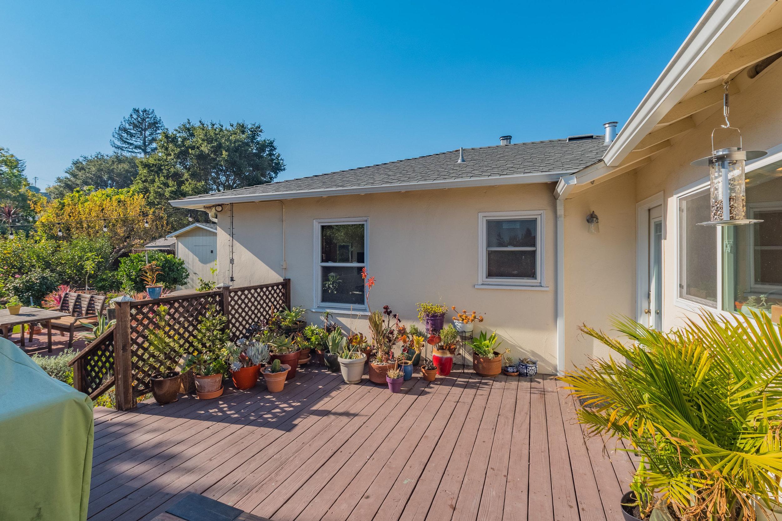 Large and Sunny Backyard