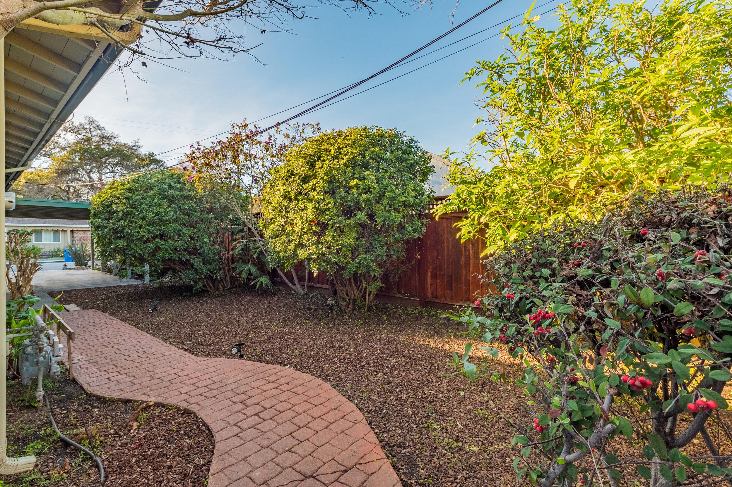 Sunny Capitola Backyard.jpg