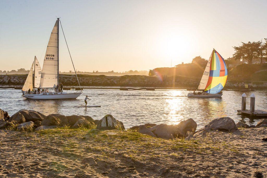 sailboat races.jpg