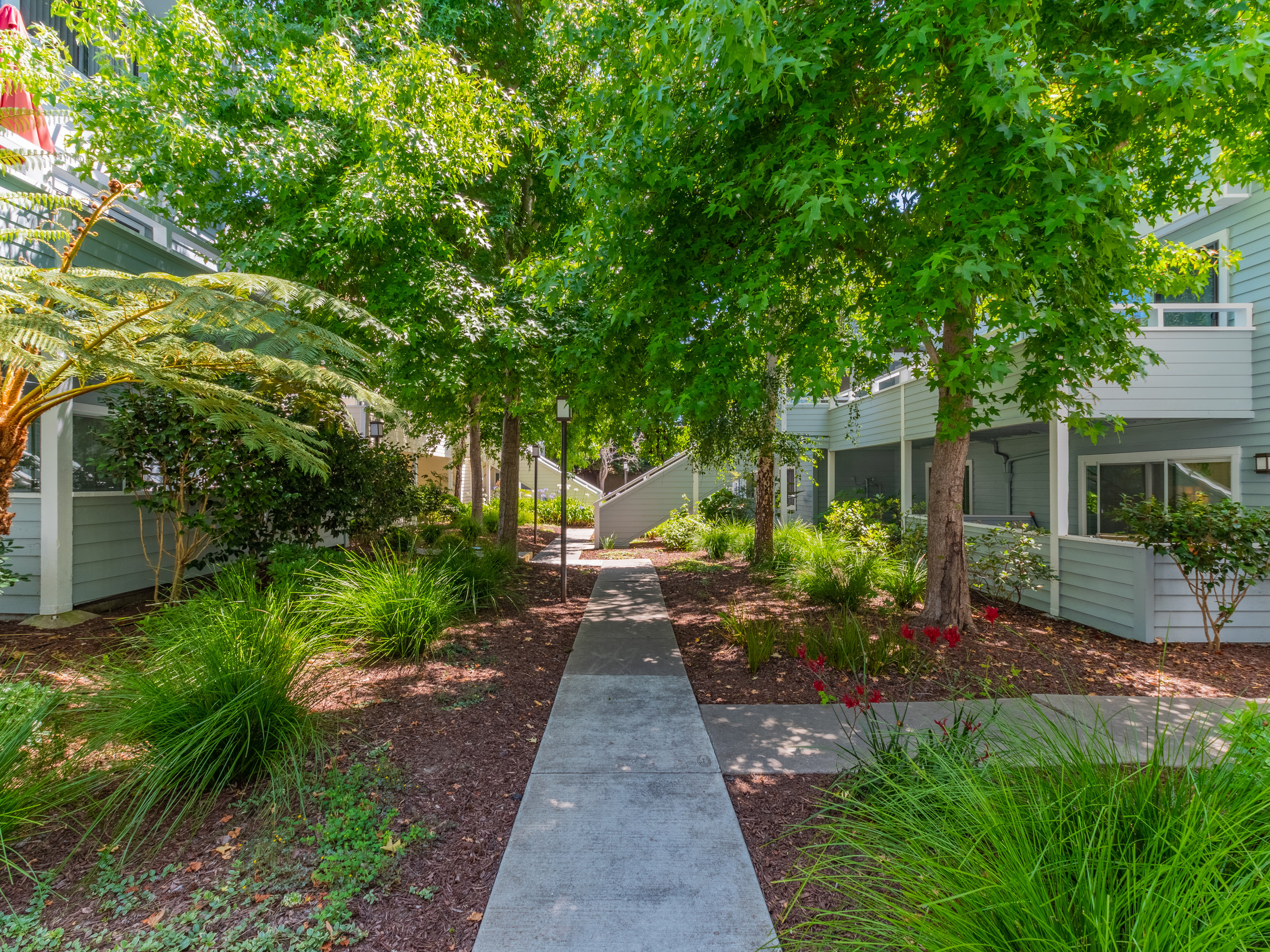 Well landscaped grounds Santa Cruz-2.jpg