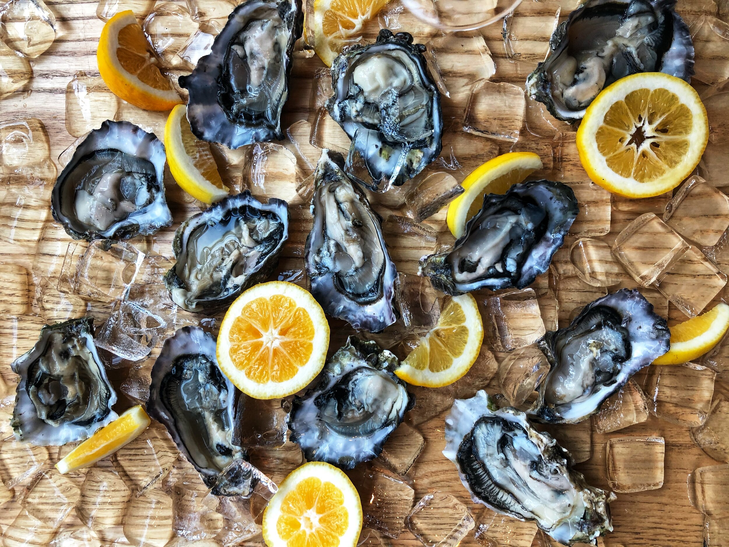 Champagne & oysters in Two Grey