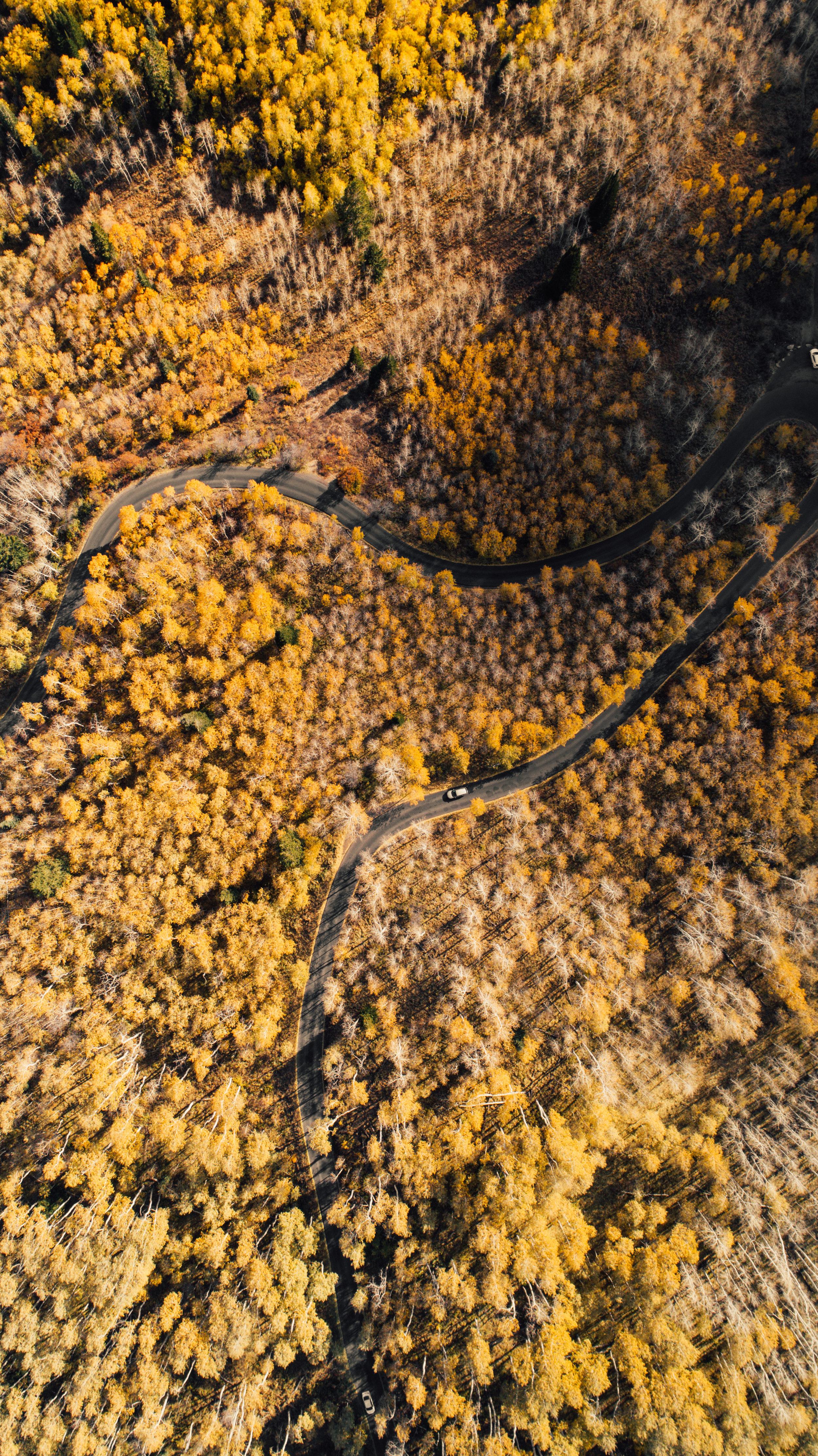 Aerial10.jpg