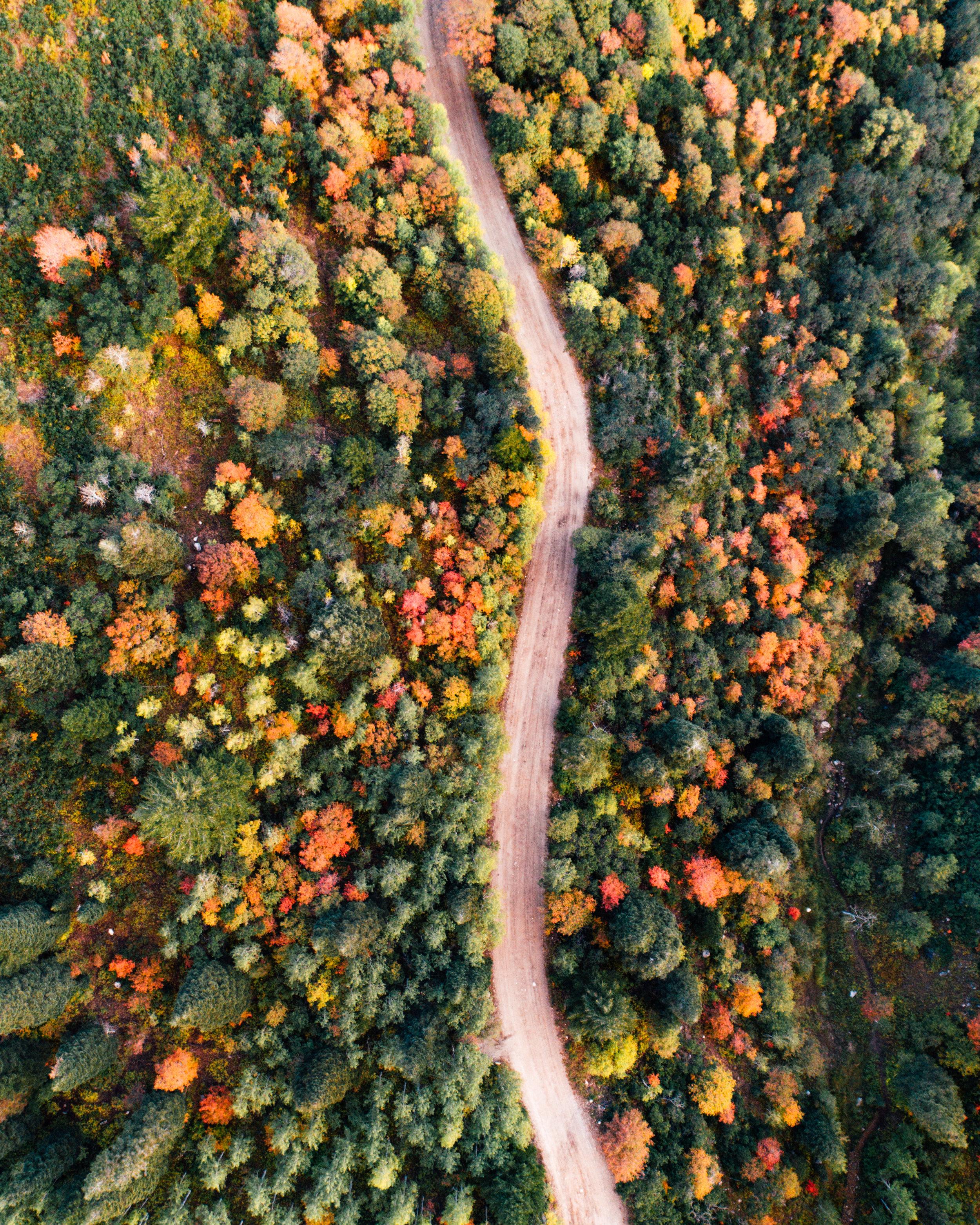 Aerial24.jpg