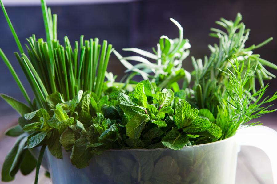 246_herbs-mint chives rosmary_MMAH_J14_0696.jpg
