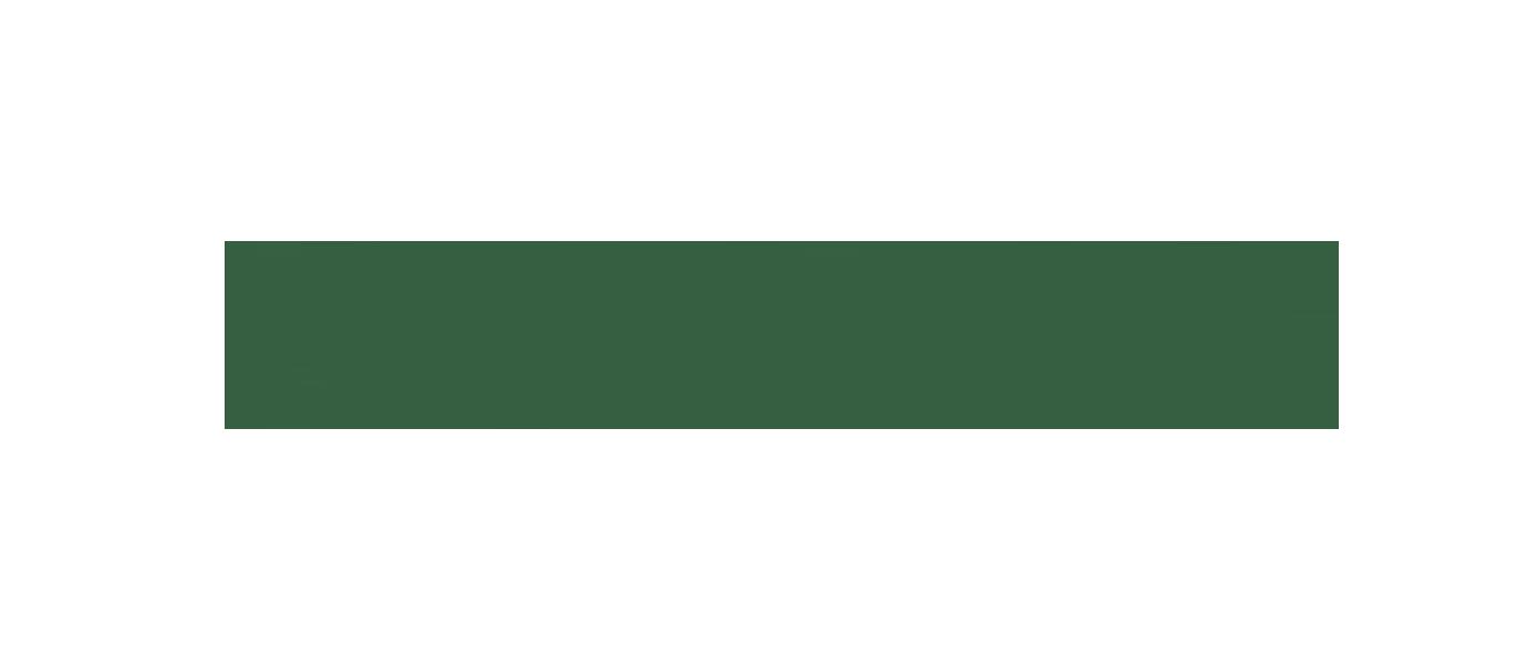 Naava logo.png