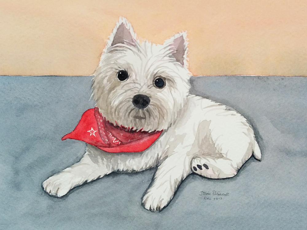 watercolor-pet-portrait.png