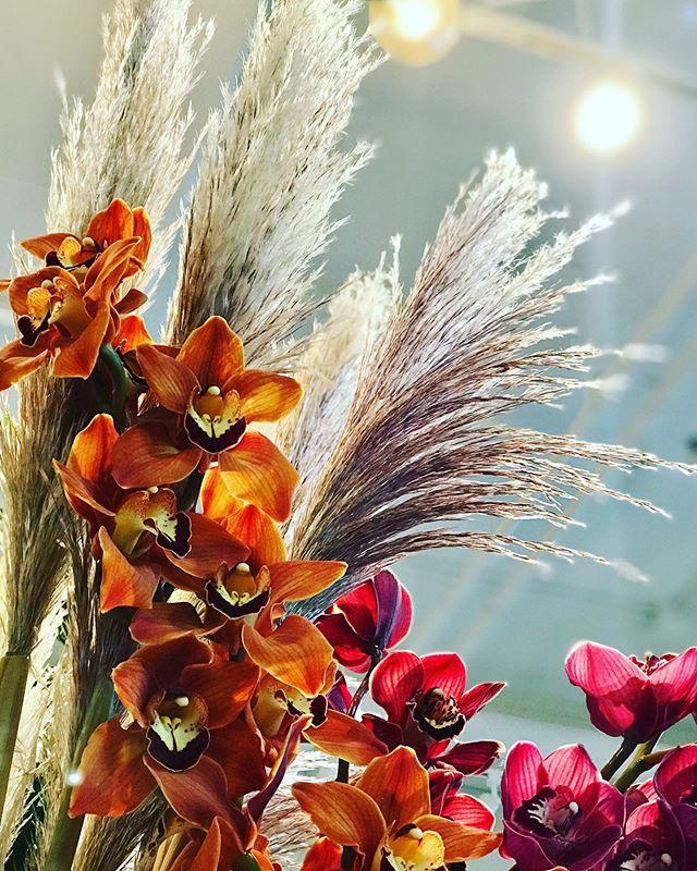 #fallfeels #cymbidium #pampasgrass lots of local foliage and grasses, and the last of WA #dahlias #seattle #seattleflorist