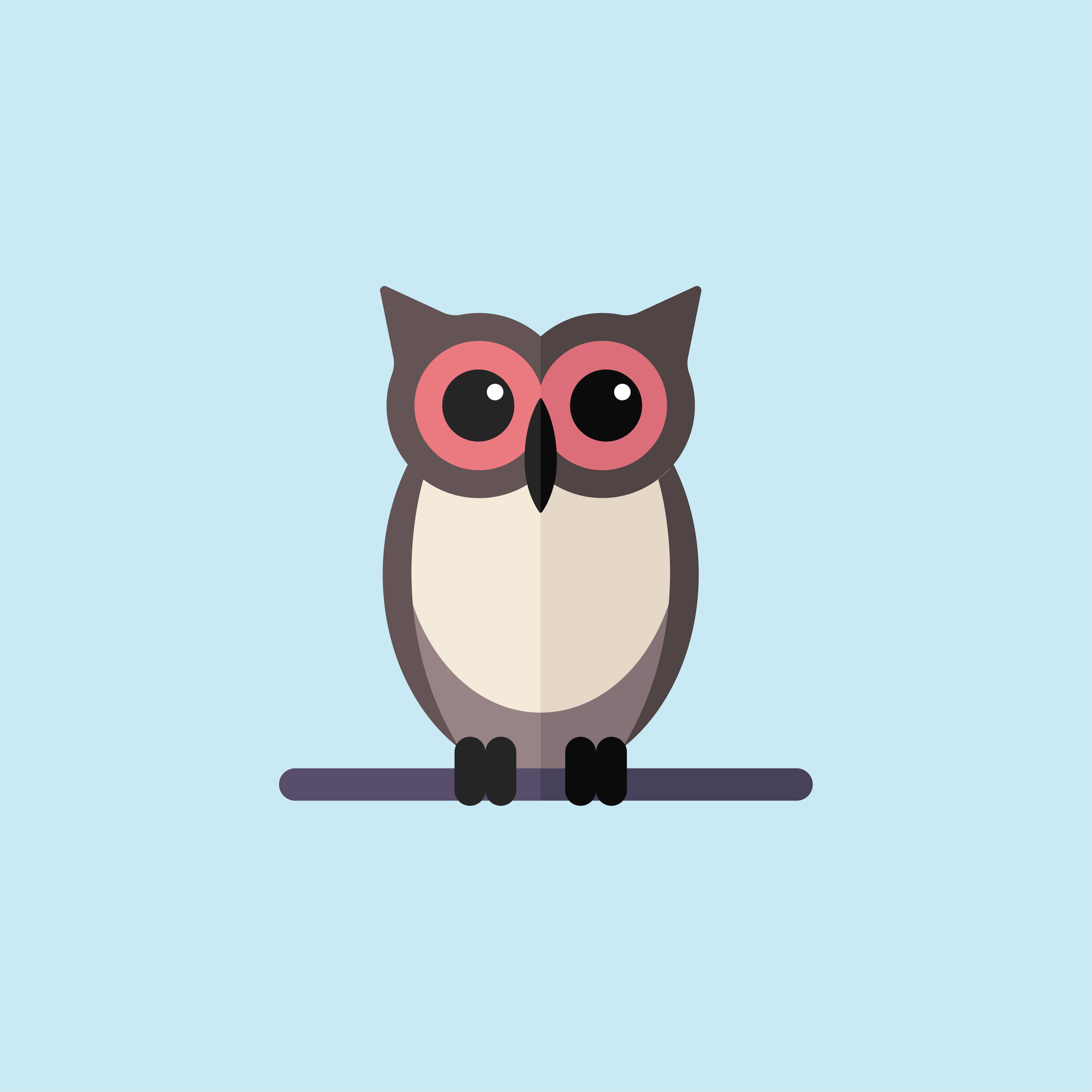 3 Owl.jpg
