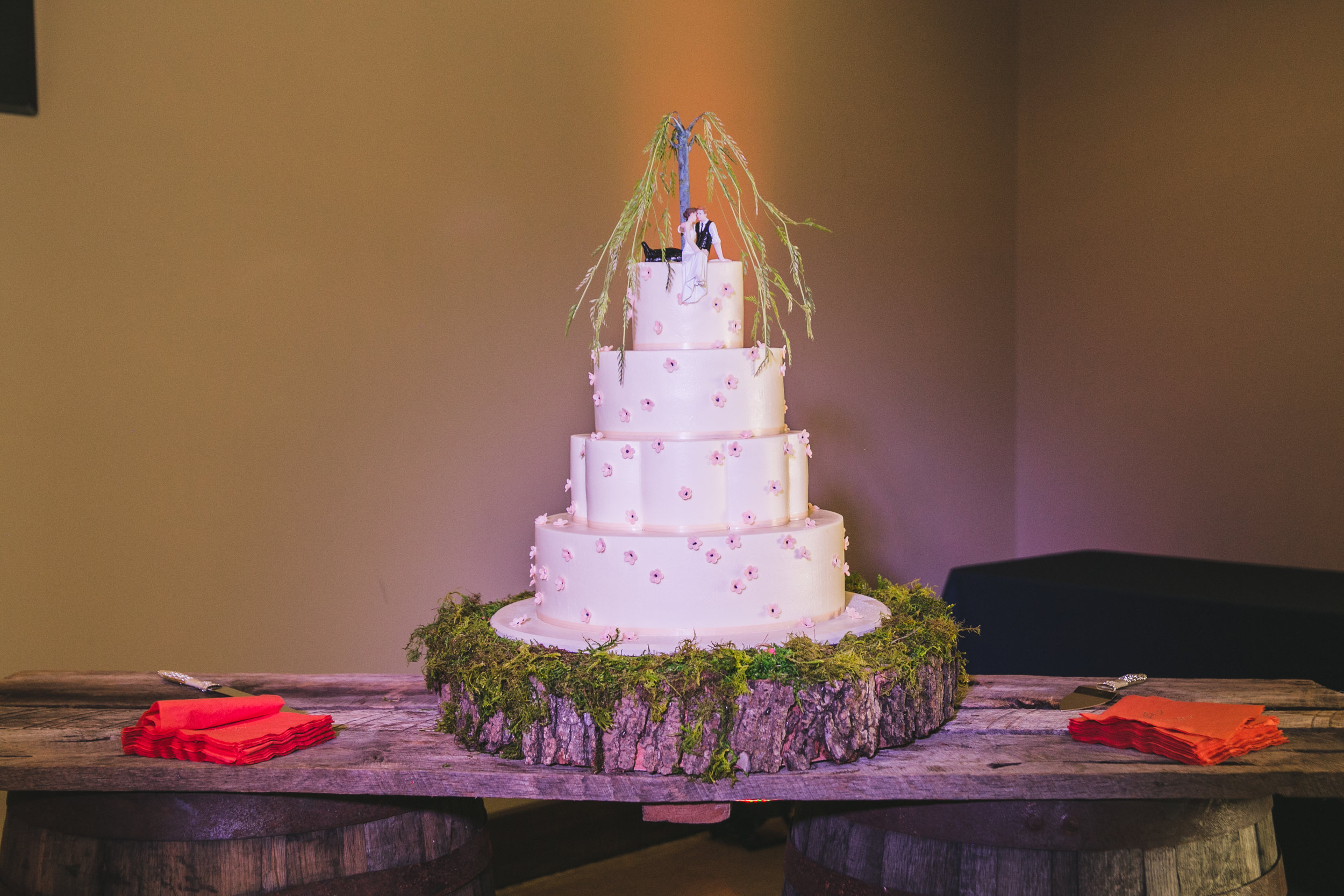 Anastasia and Jeremiah, The Silo Event Center, Hopkinsville KY