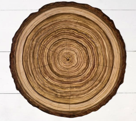 Woodslice Paper Placemats - 15.35
